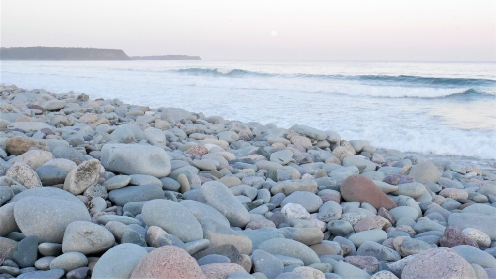 Lawrencetown plage beach NS