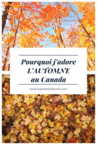 decouvrir automne canada feuilles blog voyage Arpenter le chemin
