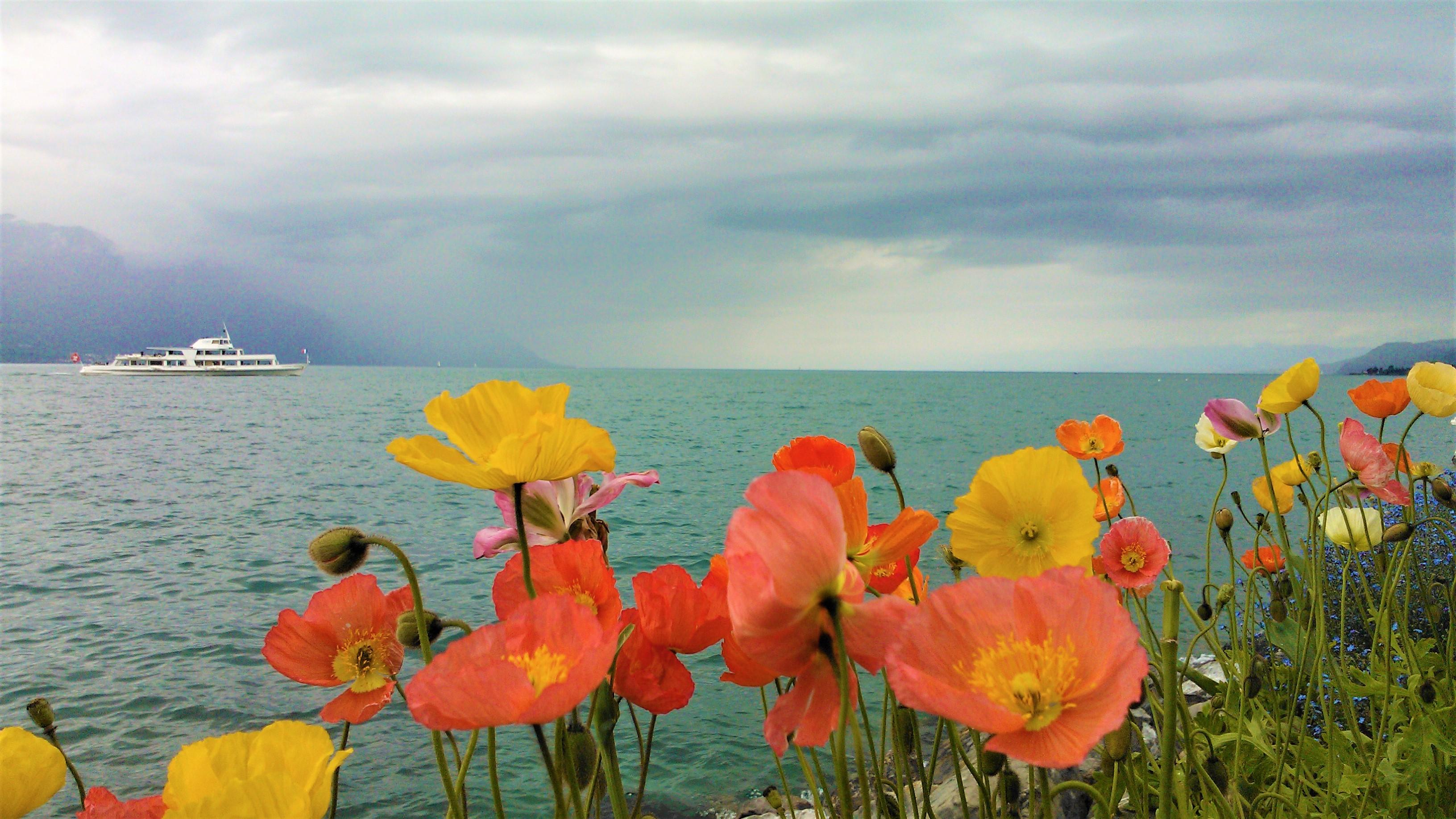 sens vie voyage road-trip canada nouveau-brunswick arpenter le chemin blog