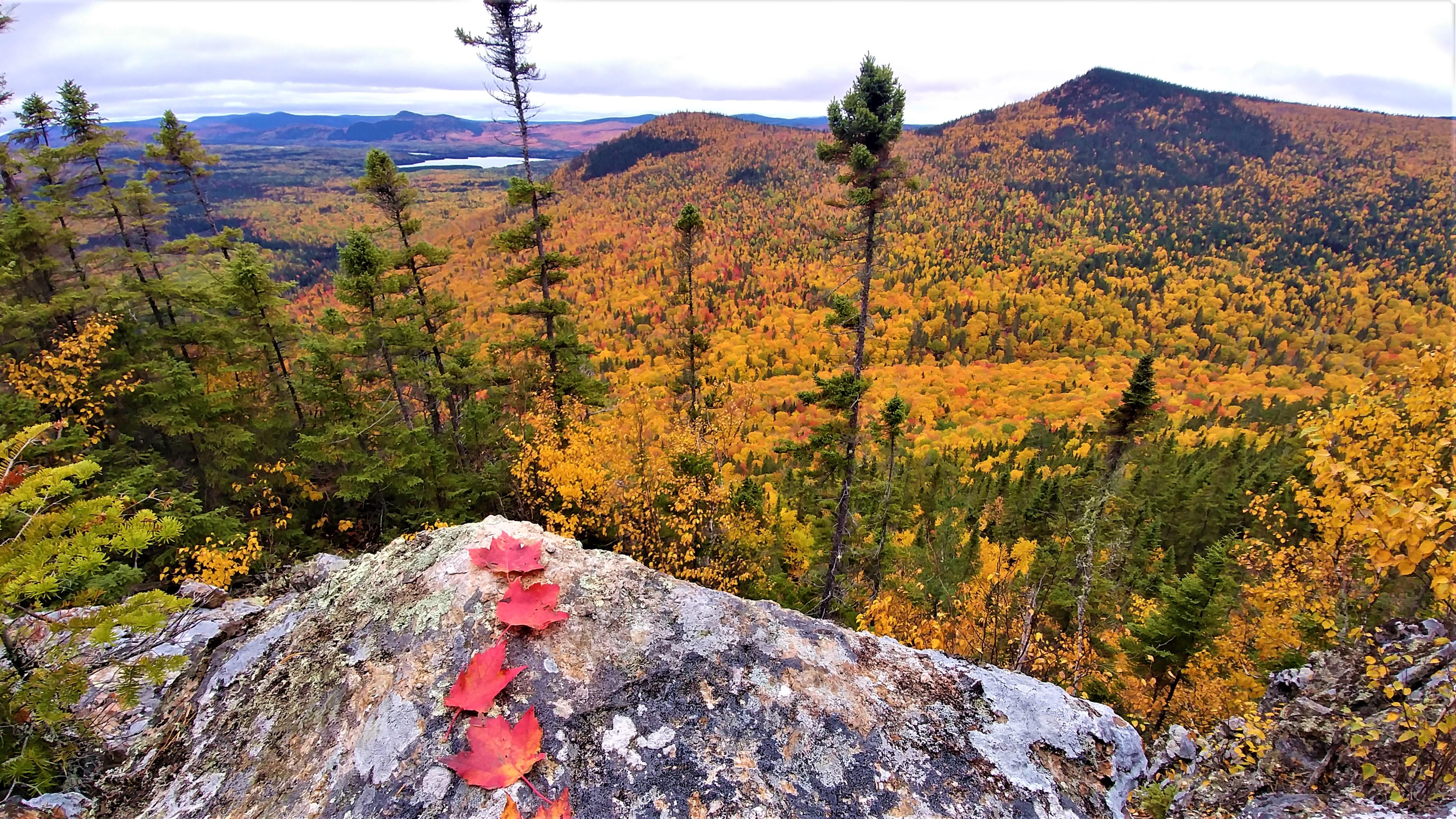 Mont Carleton lac Bathurst Nouveau-Brunswick Canada Acadie road-trip automne blog voyage road-trip arpenter le chemin.JPG