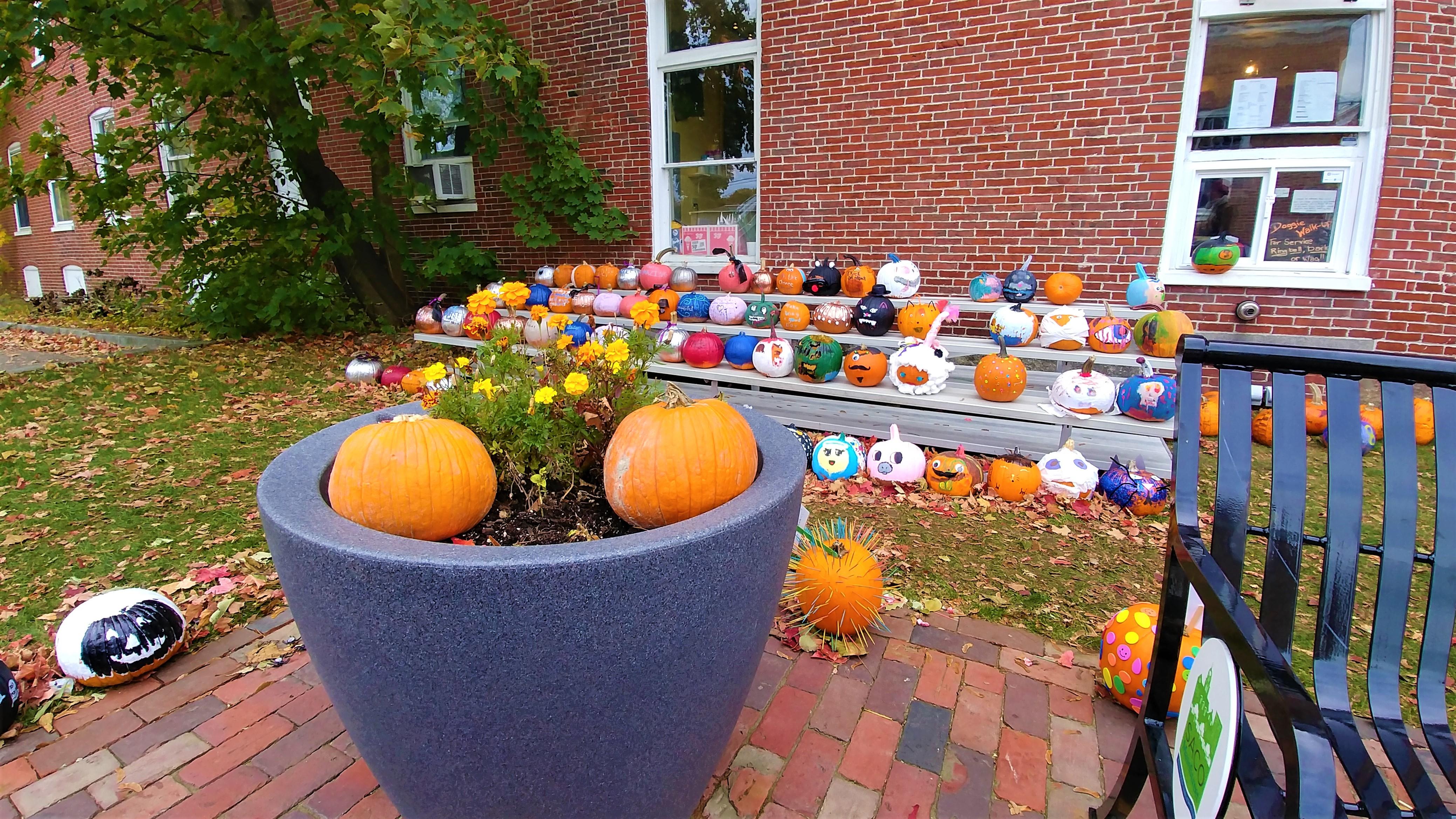 saco jack o lantern citrouilles halloween automne boston road-trip blog voyage arpenter le chemin