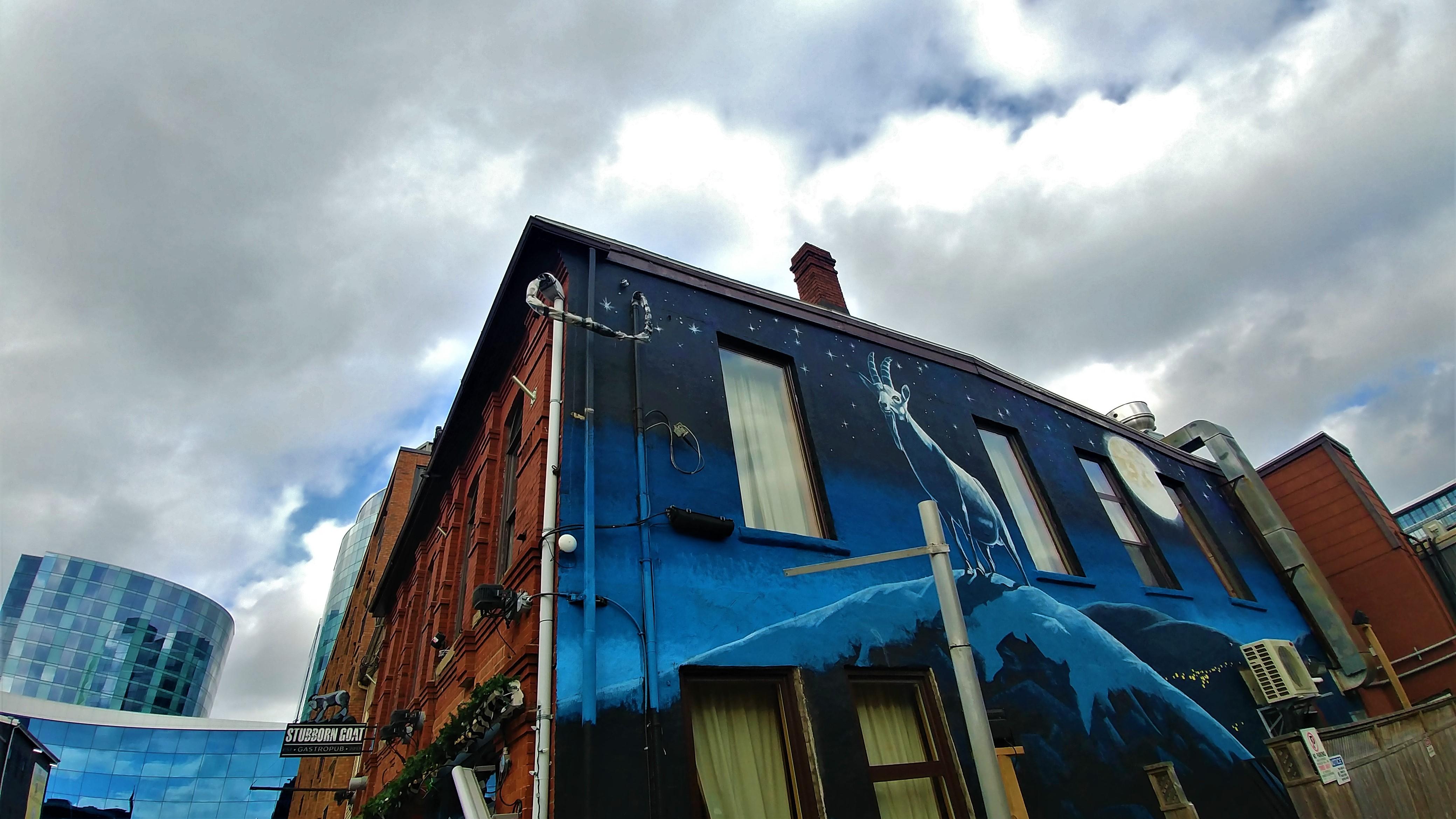 Halifax street art escapade que faire blog voyage canada maritimes arpenter le chemin