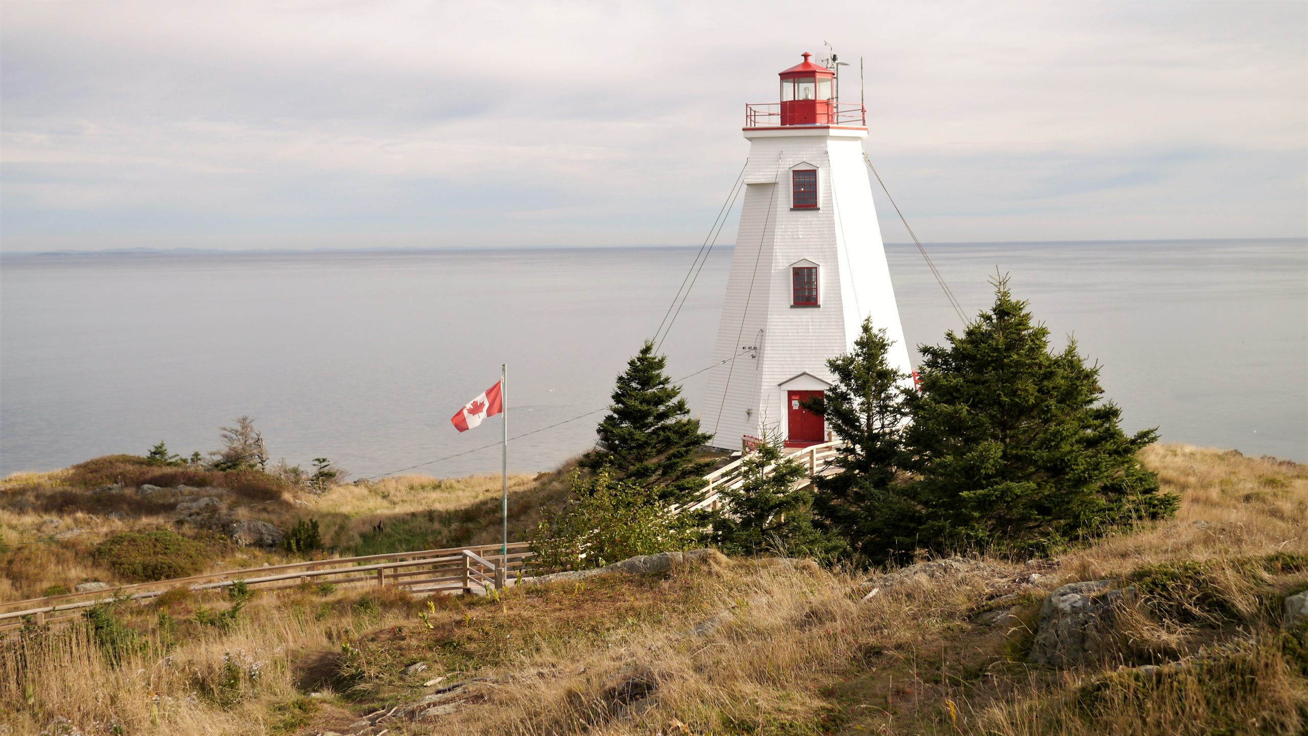 Visiter île Grand Manan baie de Fundy Nouveau-Brunswick