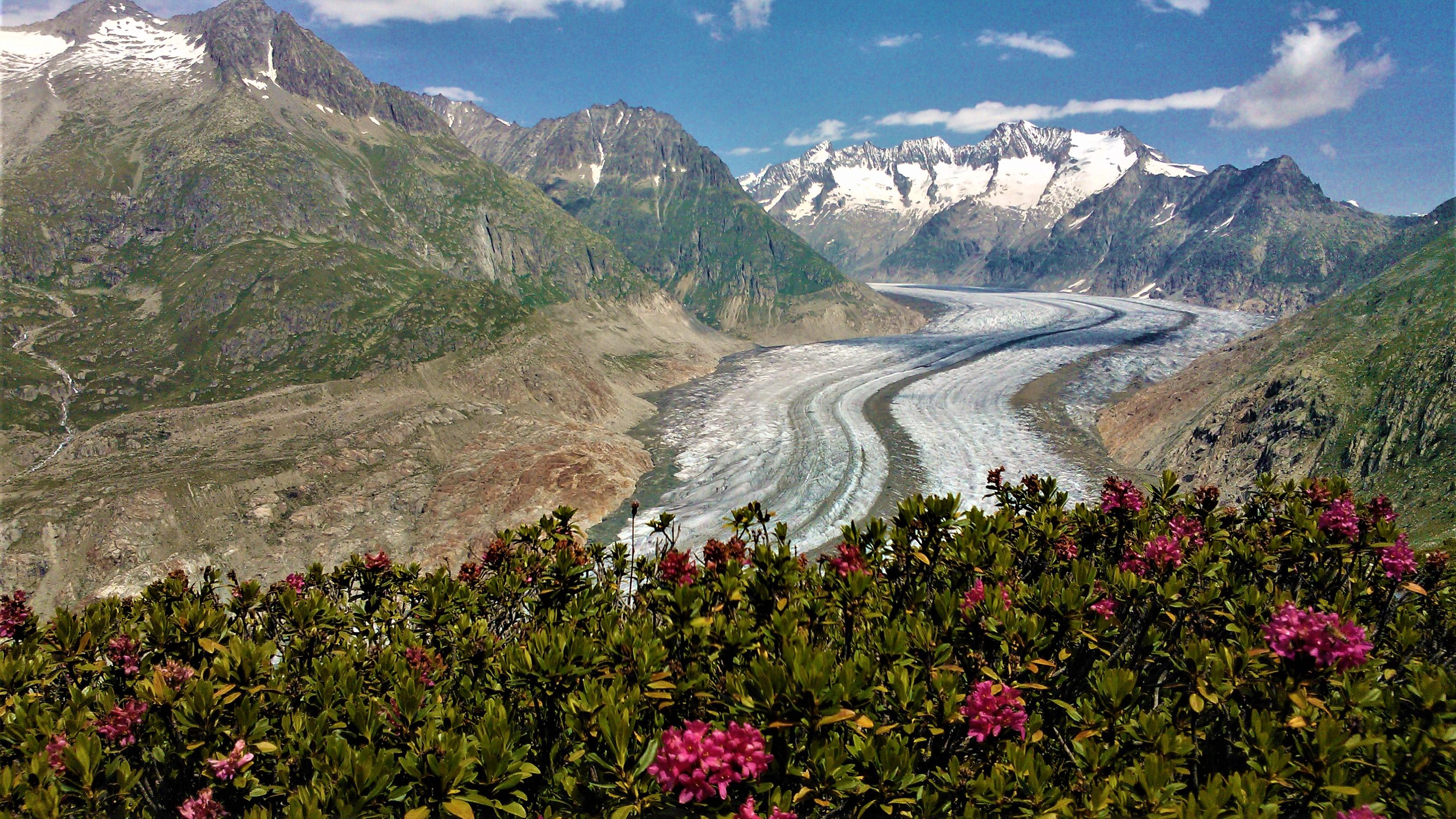 alpes suisses que faire vallee du rhone aletsch randonnee blog voyage arpenter le chemin