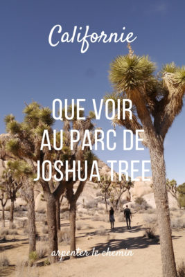 californie que voir parc national joshua tree randonnees etats-unis blog voyage road-trip usa arpenter le chemin