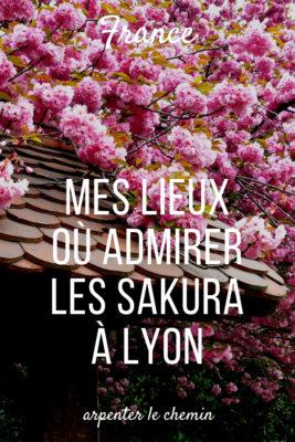 cerisiers sakura hanami lyon france visite printemps blog voyage arpenter le chemin
