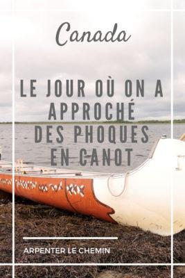 canot phoques kouchibouguac nouveau-brunswick acadie moncton blog voyage road-trip canada arpenter le chemin