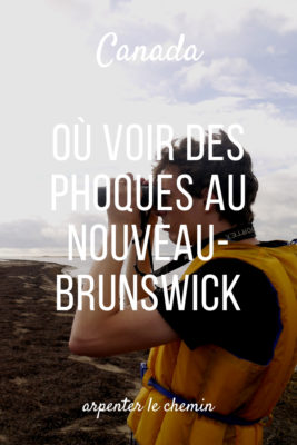 où voir phoques kouchibouguac nouveau-brunswick canot blog voyage road-trip canada arpenter le chemin