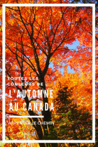 COULEURS AUTOMNE CANADA blog voyage arpenter le chemin