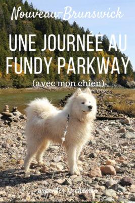 sentier fundy parkway randonnees nouveau-brunswick blog voyage road-trip canada arpenter le chemin