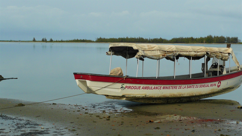 Senegal pirogue voyage mangrove arpenter le chemin