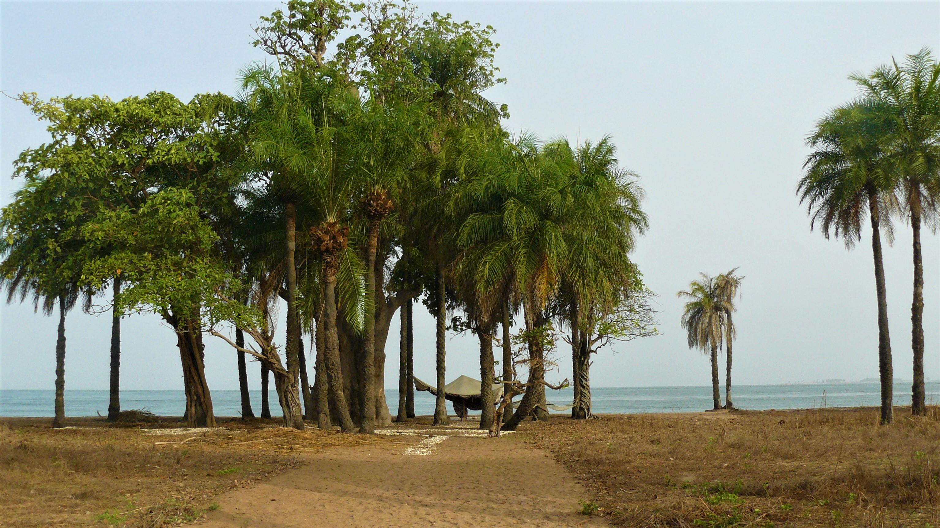 Senegal retraite voyage arpenter le chemin