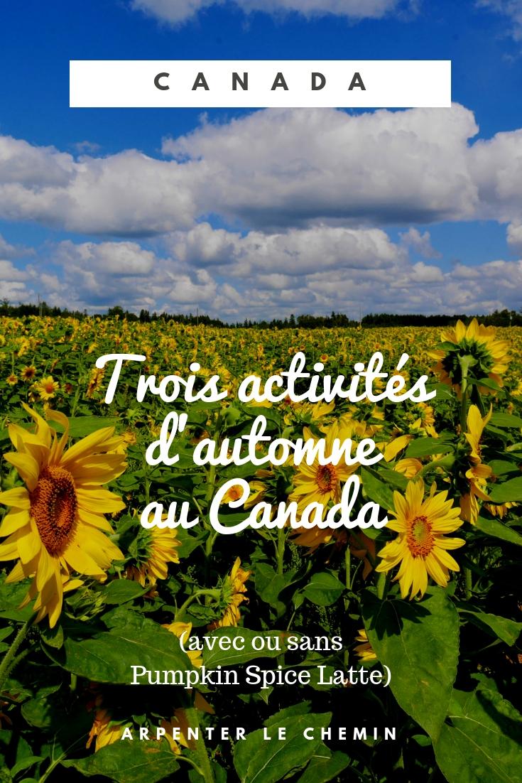 automne que faire activites de saison ete indien canada road-trip voyage blog arpenter le chemin