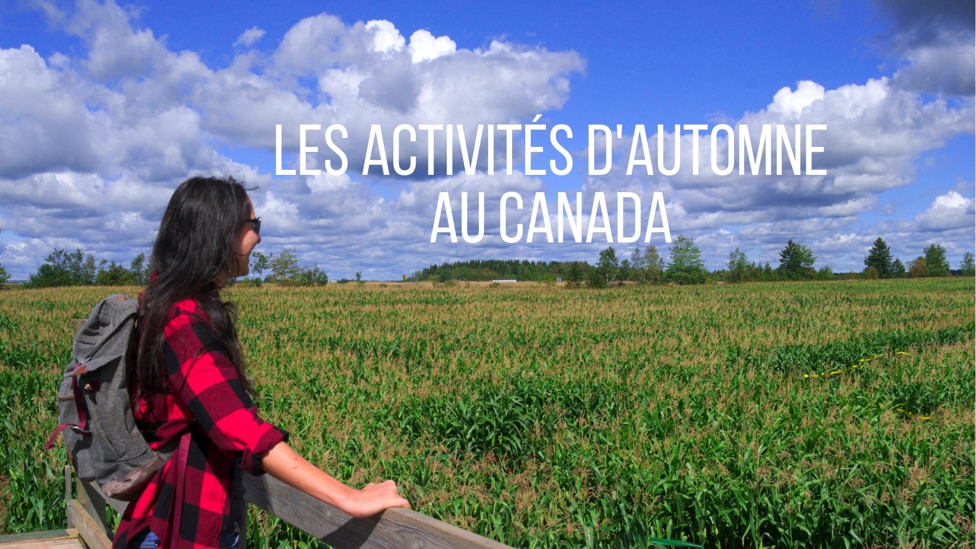 titre automne activites canada ete indien moncton nouveau-brunswick labyrinthe road-trip voyage arpenter le chemin