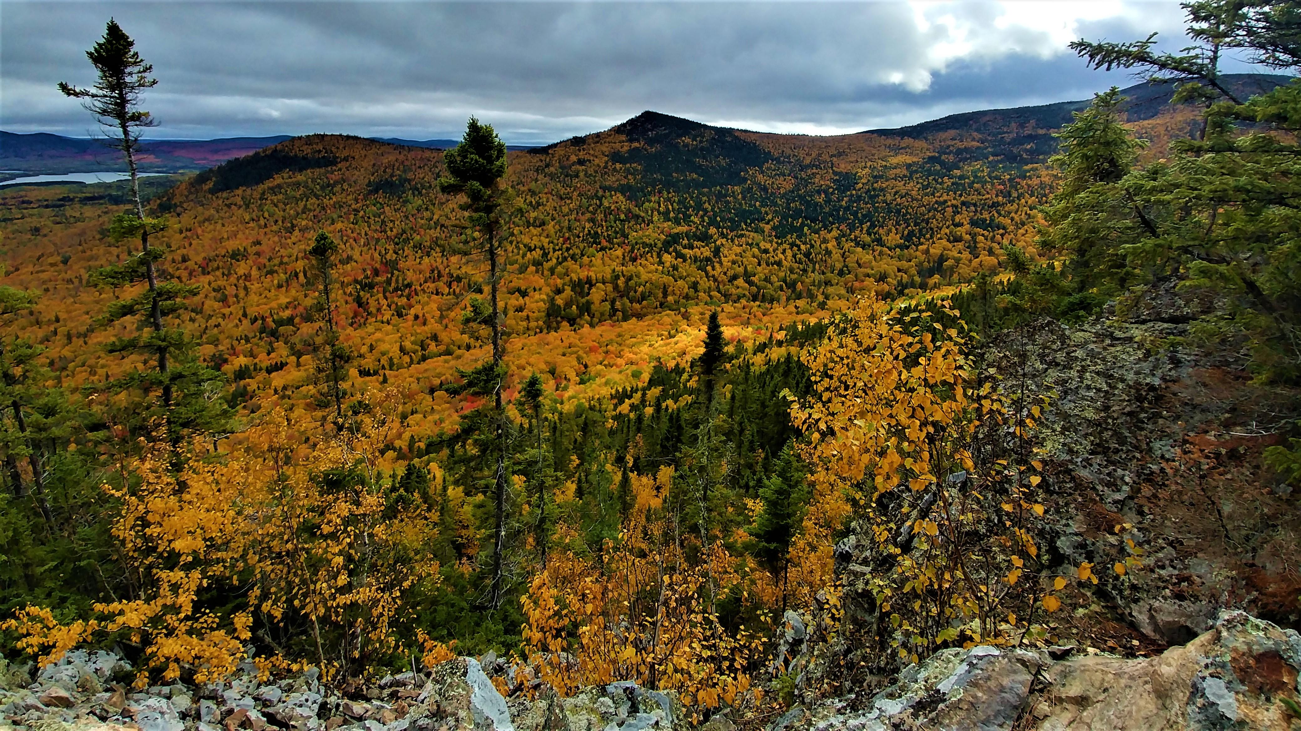 Mont Carleton Mont Head Nouveau-Brunswick Canada Acadie road-trip automne blog voyage road-trip arpenter le chemin