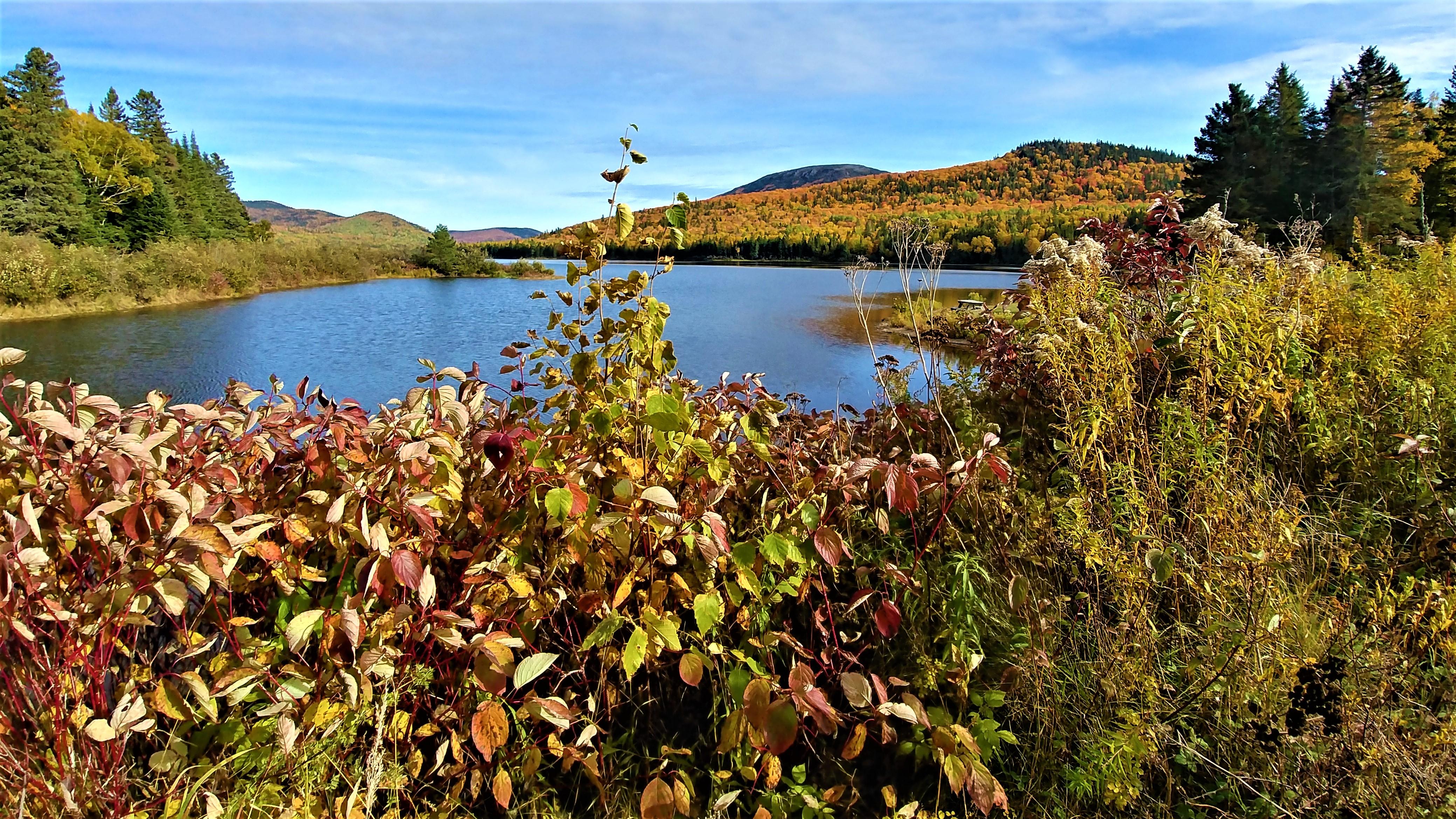 Mont Carleton parc provincial Nouveau-Brunswick Canada Acadie road-trip automne blog voyage road-trip arpenter le chemin