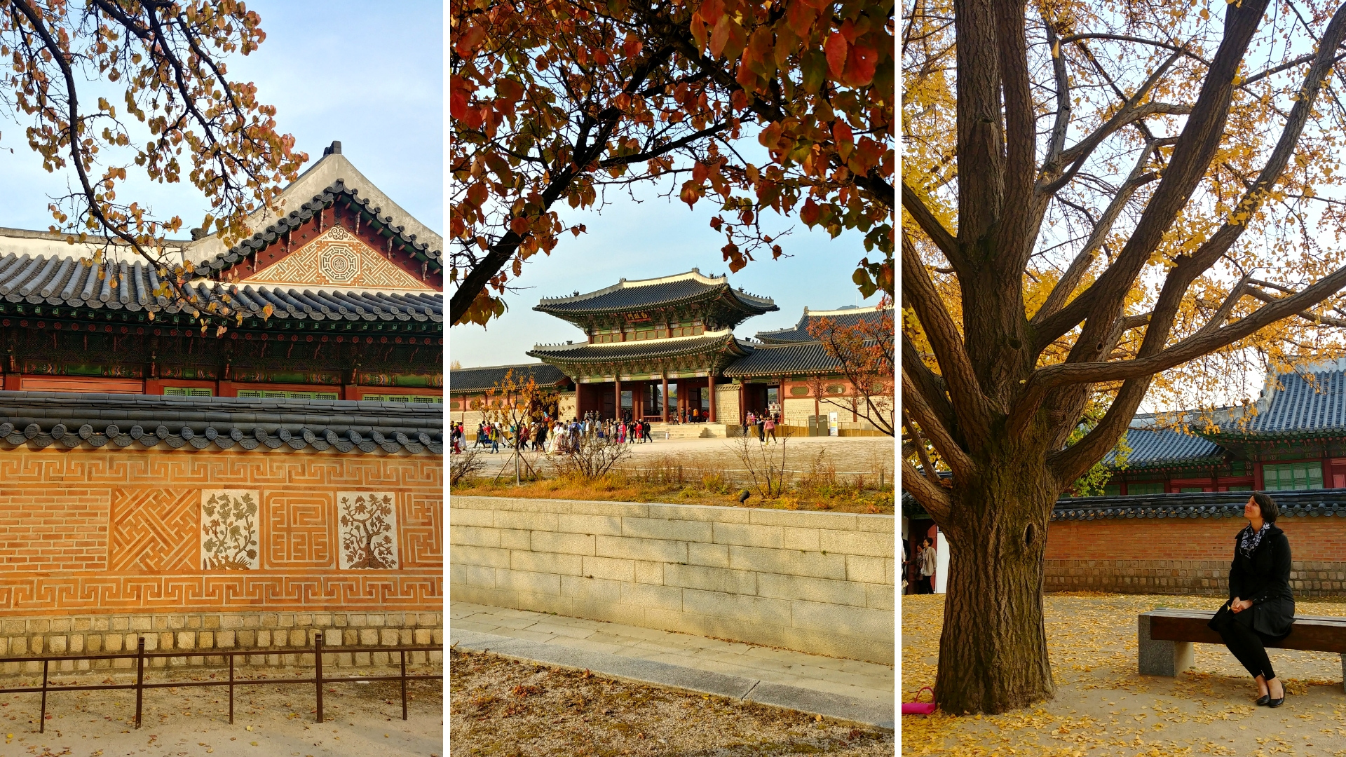 seoul Gyeongbokgung palais coree du sud blog voyage arpenter le chemin