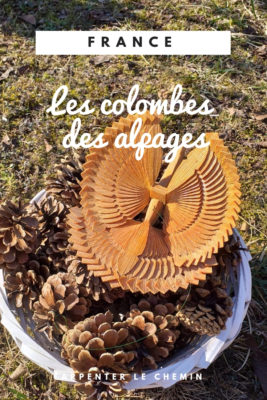 colombes alpages haute-savoie abondance chatel blog voyage france arpenter le chemin