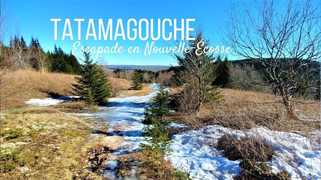 titre tatamagouche nouvelle-ecosse canada arpenter le chemin