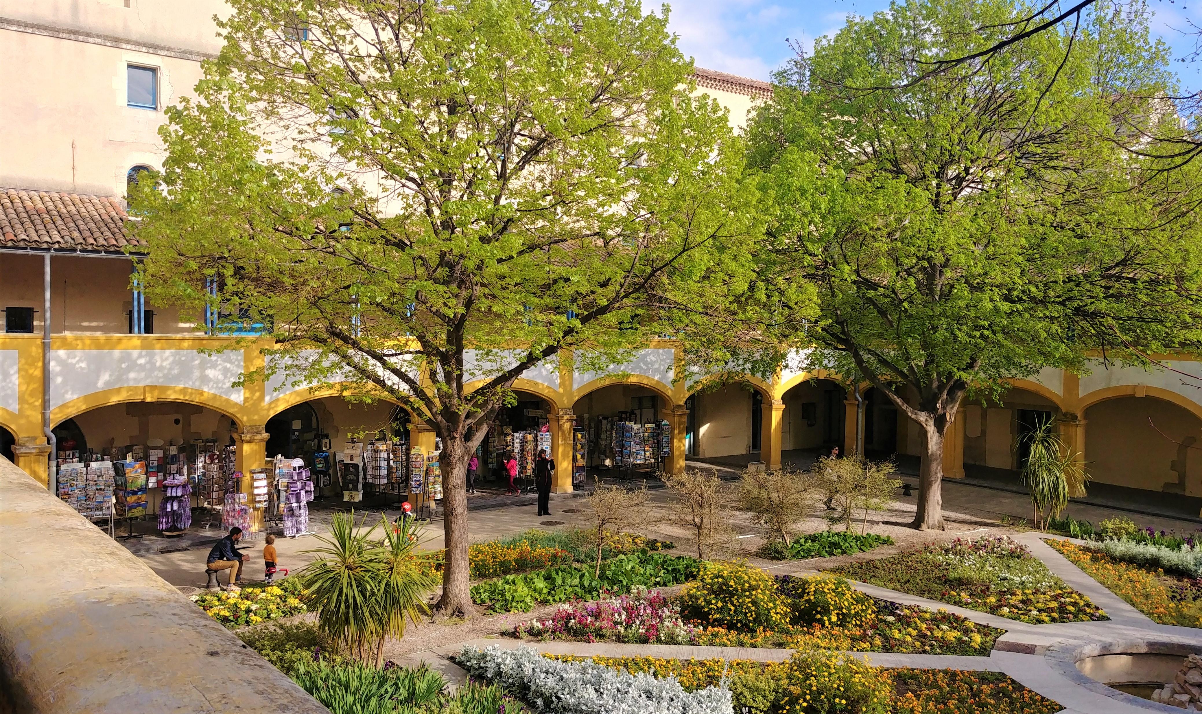 Arles Van Gogh visites blog voyage france