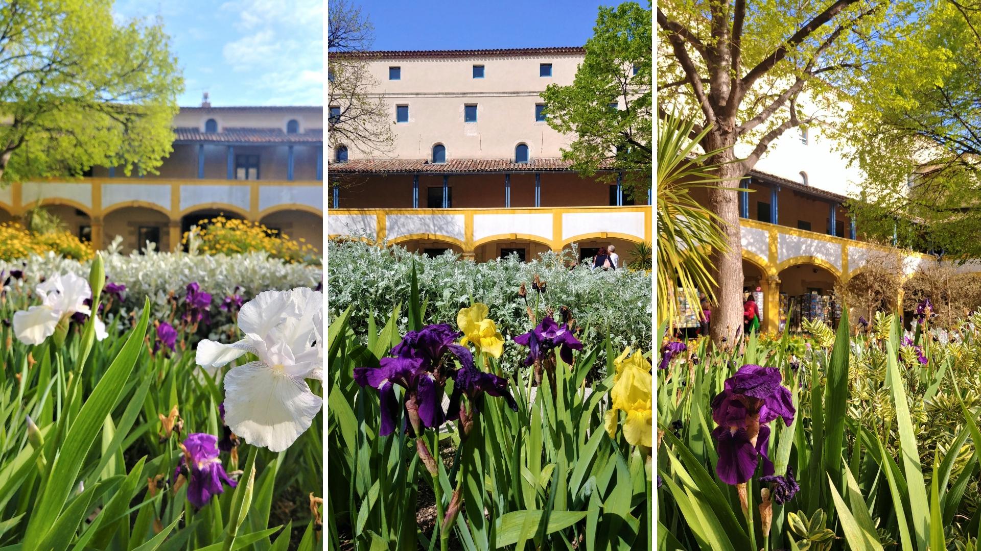 Arles espace van gogh iris provence blog voyage france arpenter le chemin