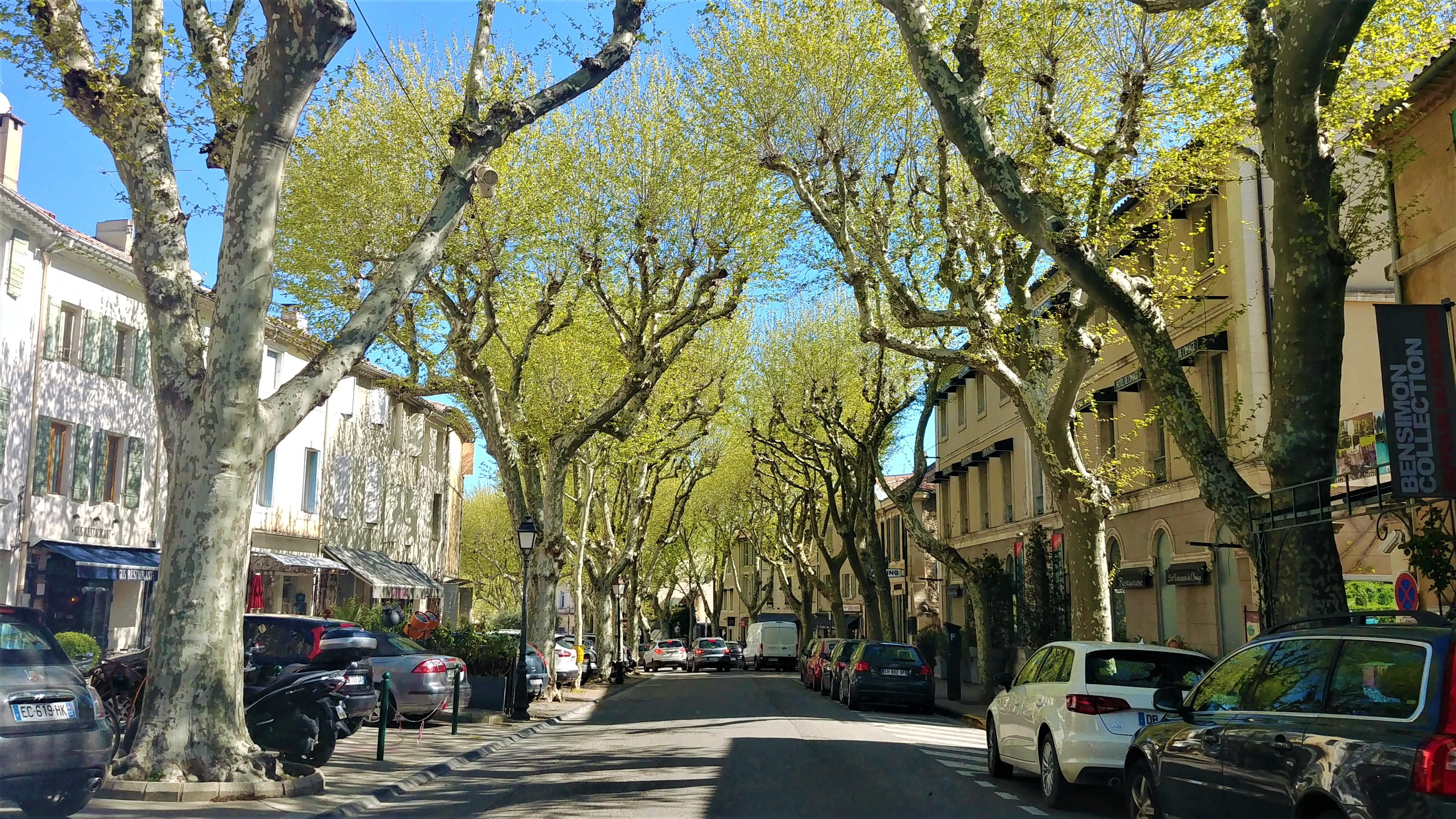 Les Baux Saint Remy de provence escapade printemps platanes soleil