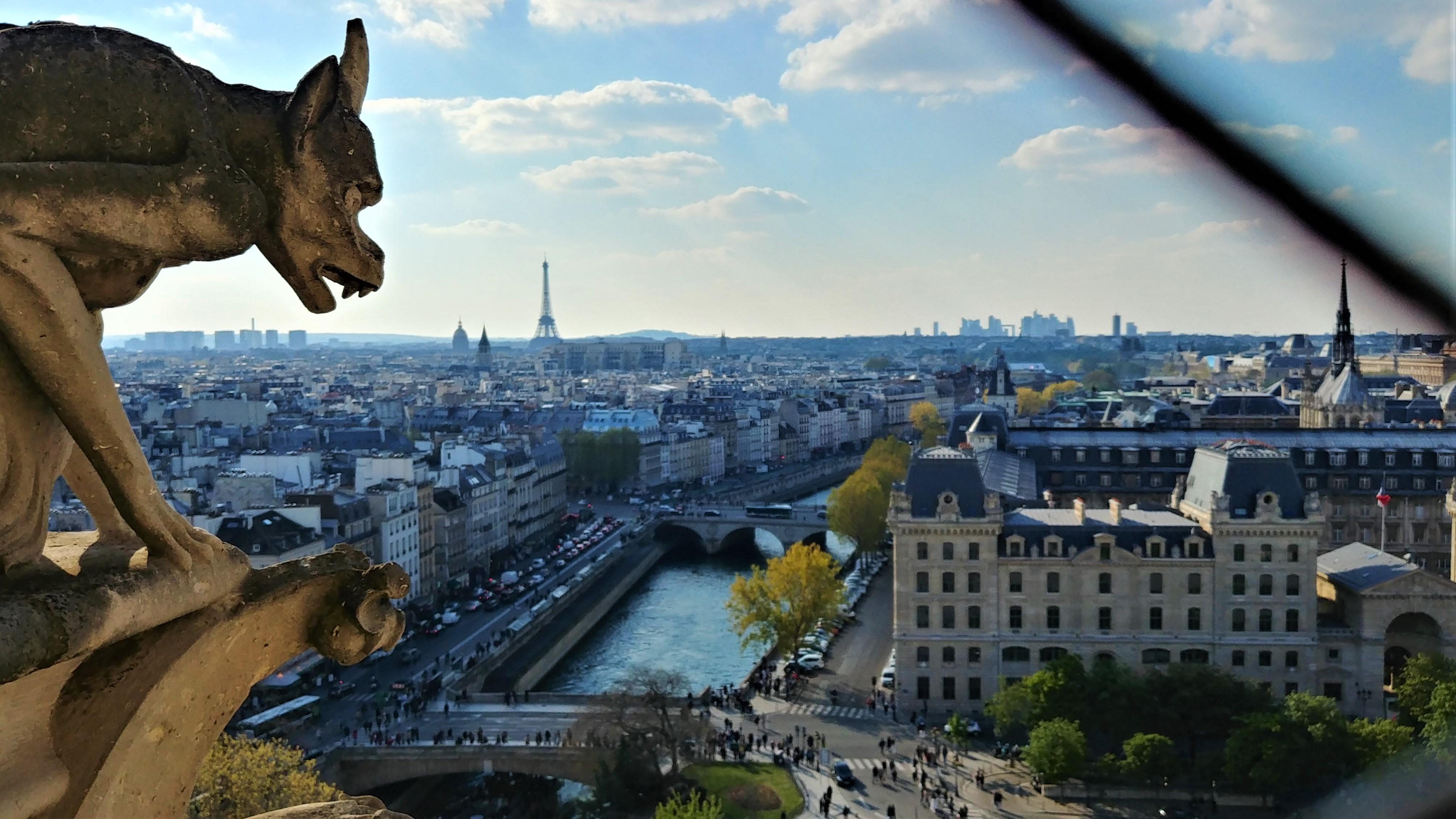 Notre-Dame Paris chimere tour sud