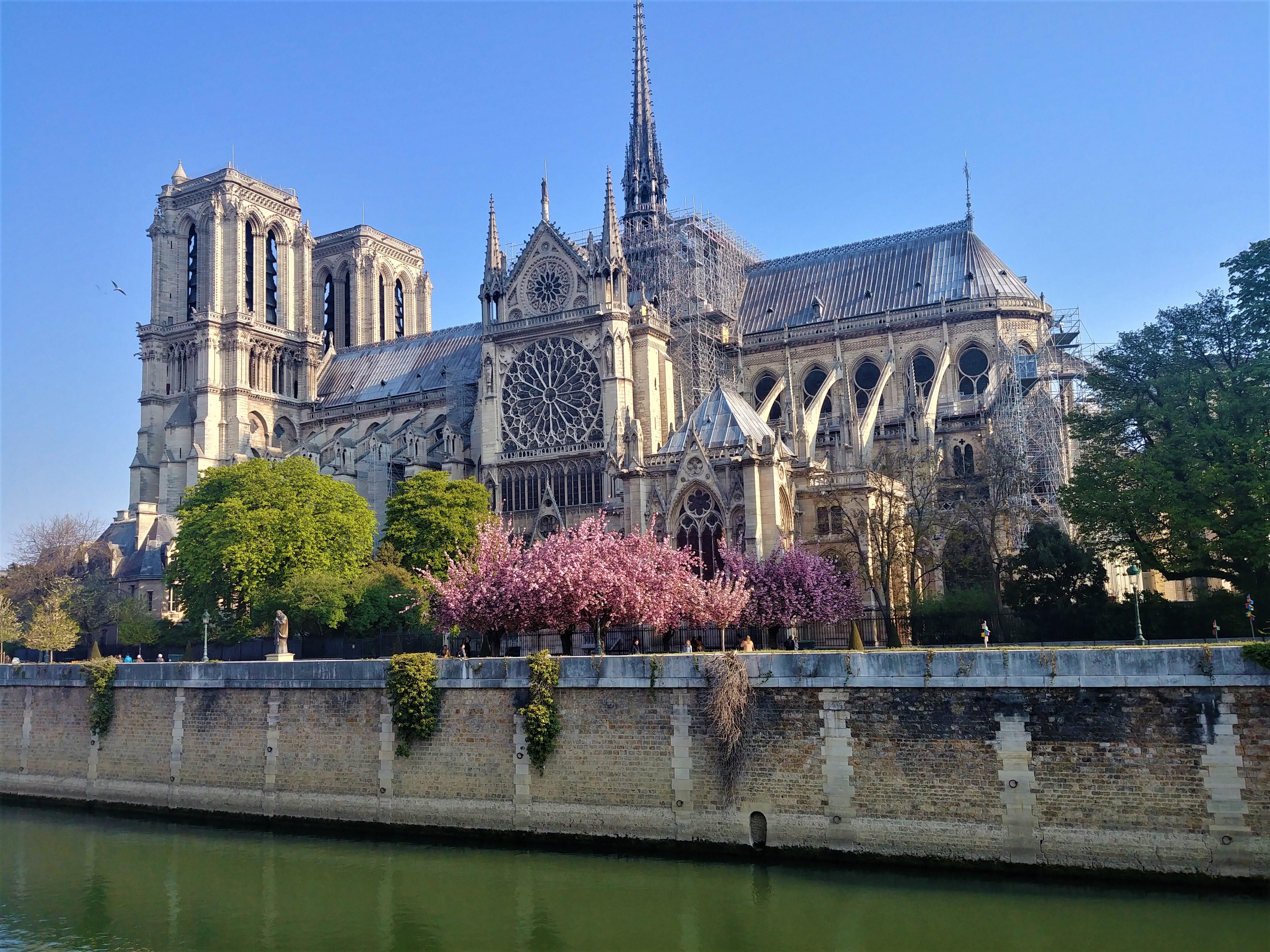 Notre-Dame Paris printemps visiter cerisiers en fleurs facade