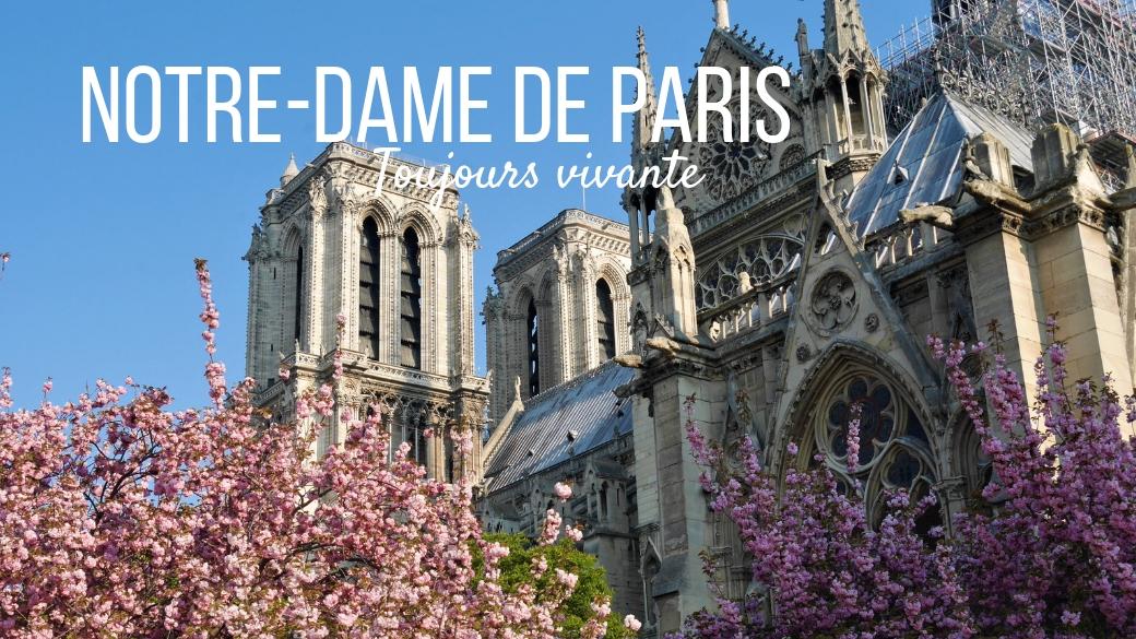 notre-dame paris cathedrale blog voyage arpenter le chemin