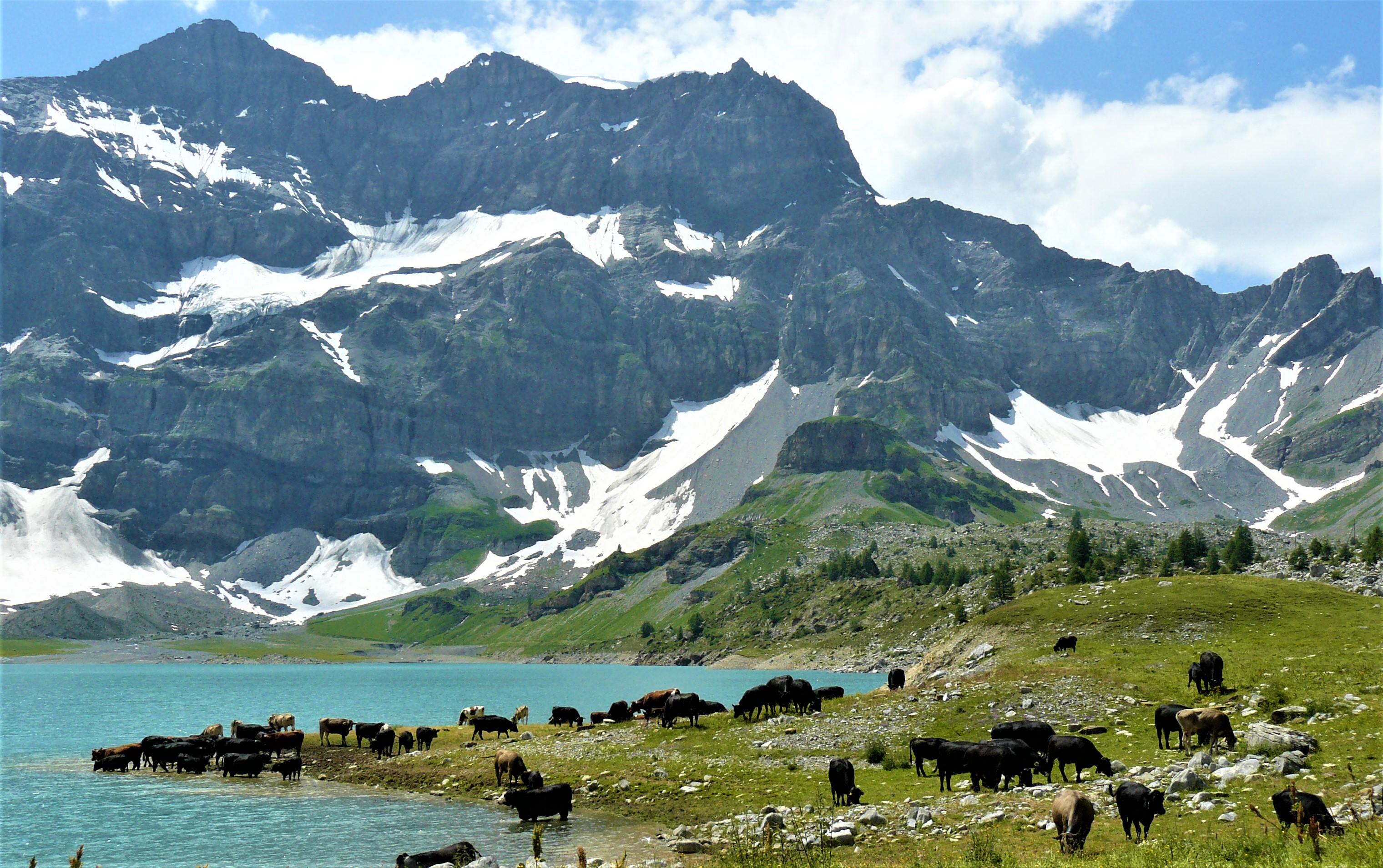 lac salanfe dents du midi marecottes randonnee facile valais suisse blog voyage