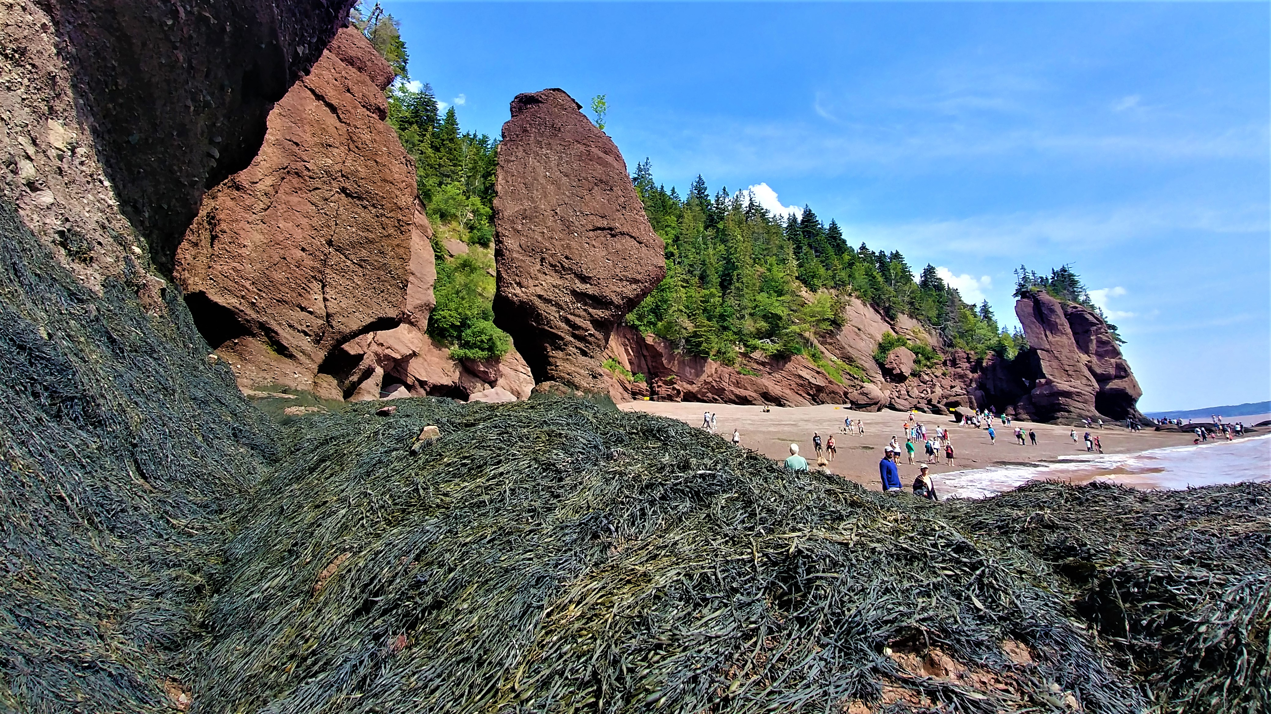 baie fundy rochers hopewell nouveau-brunswick canada