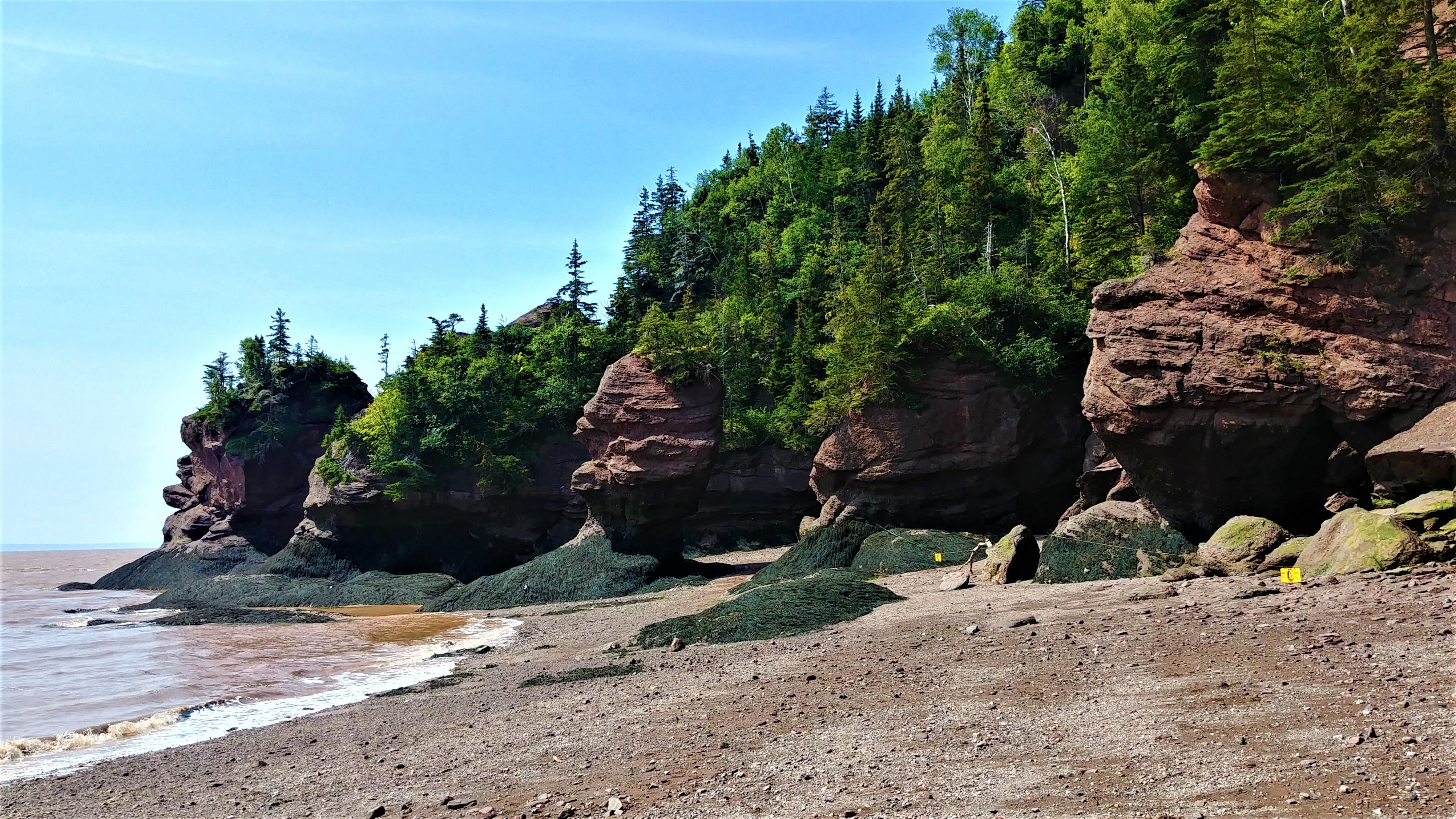 rochers hopewell infos pratiques nouveau-brunswick blog voyage canada arpenter le chemin