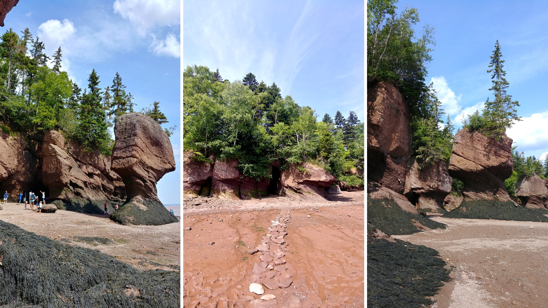 rochers hopewell que voir baie fundy nouveau-brunswick blog voyage road-trip canada arpenter le chemin