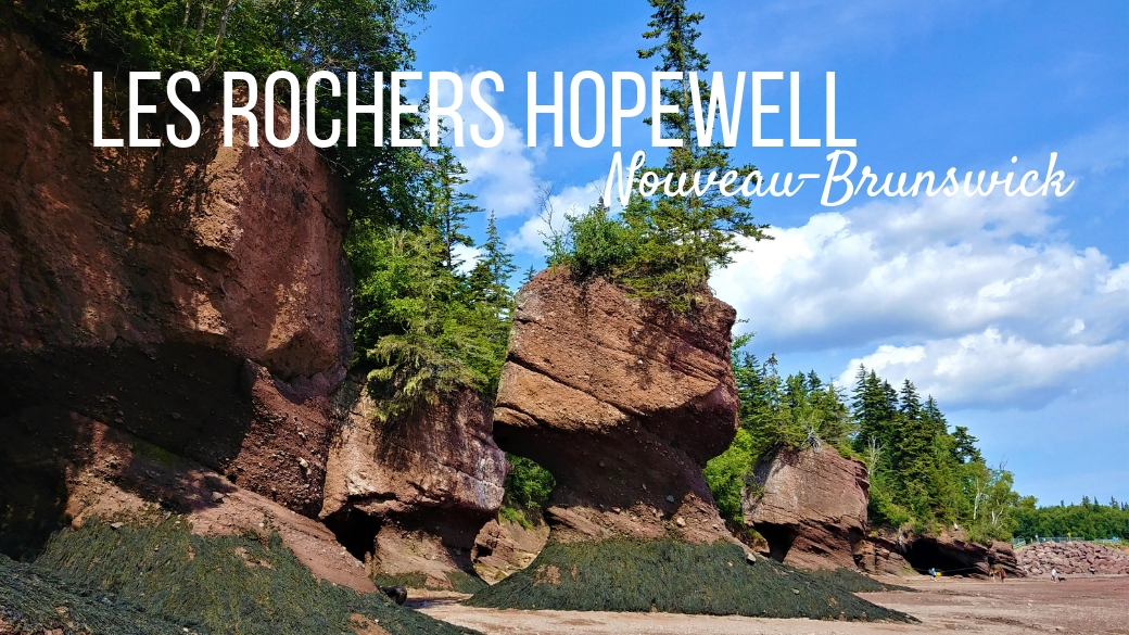 rochers hopewell rocks nouveau-brunswick canada