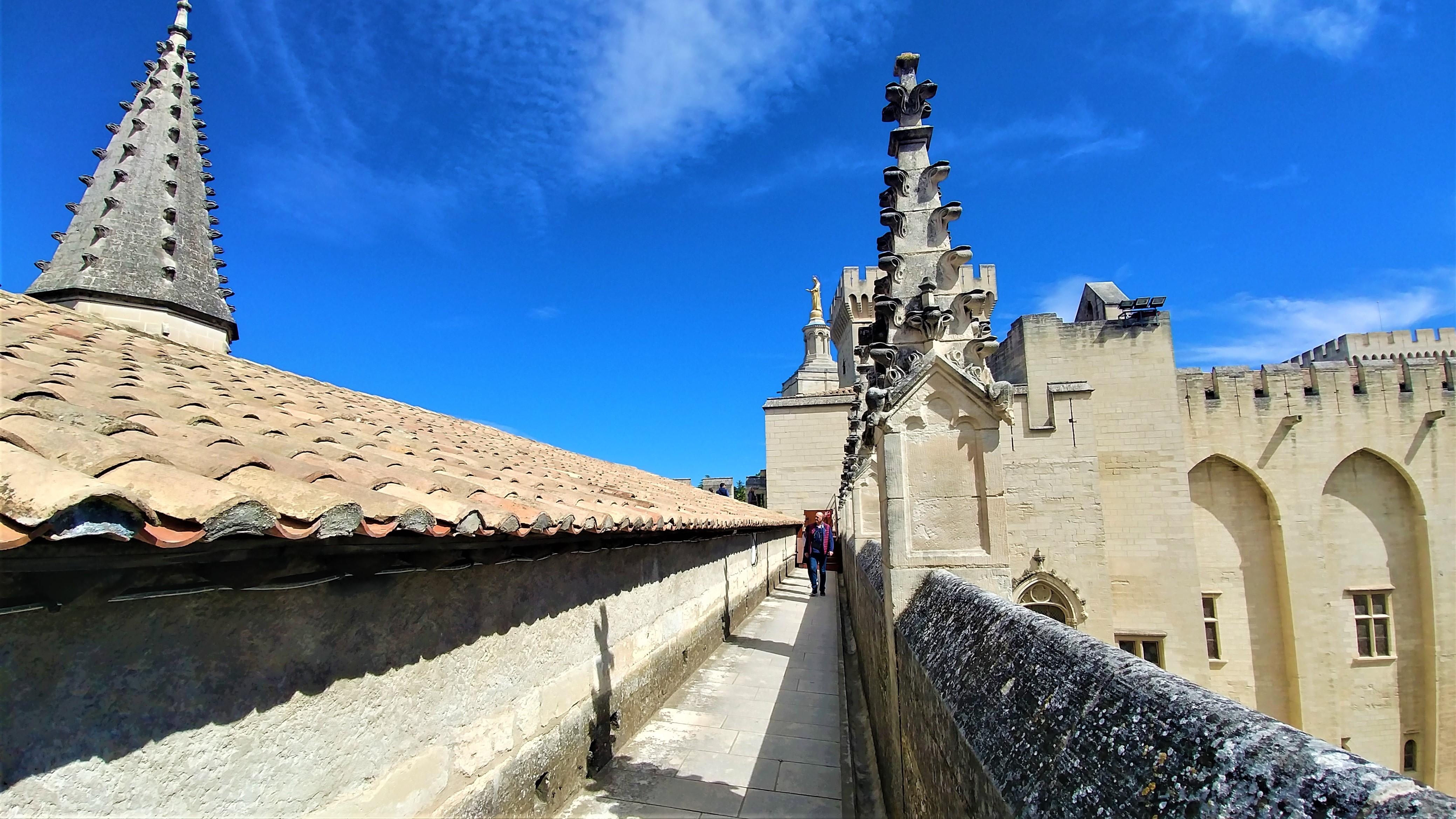 toit palais papes avignon visite provence