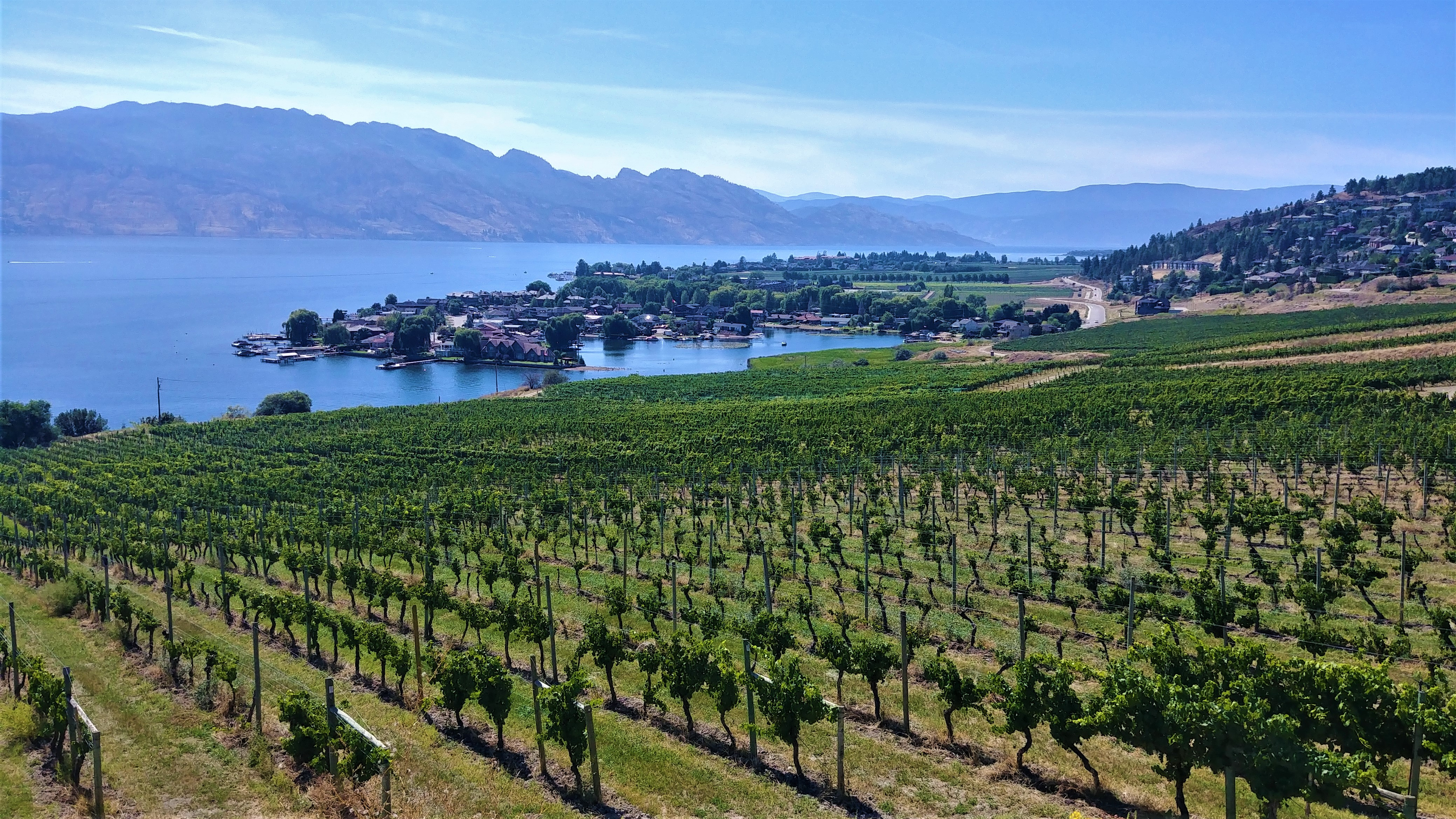 Kelowna vignoble quails gate lake country blog voyage road-trip rocheuses ouest canada arpenter le chemin