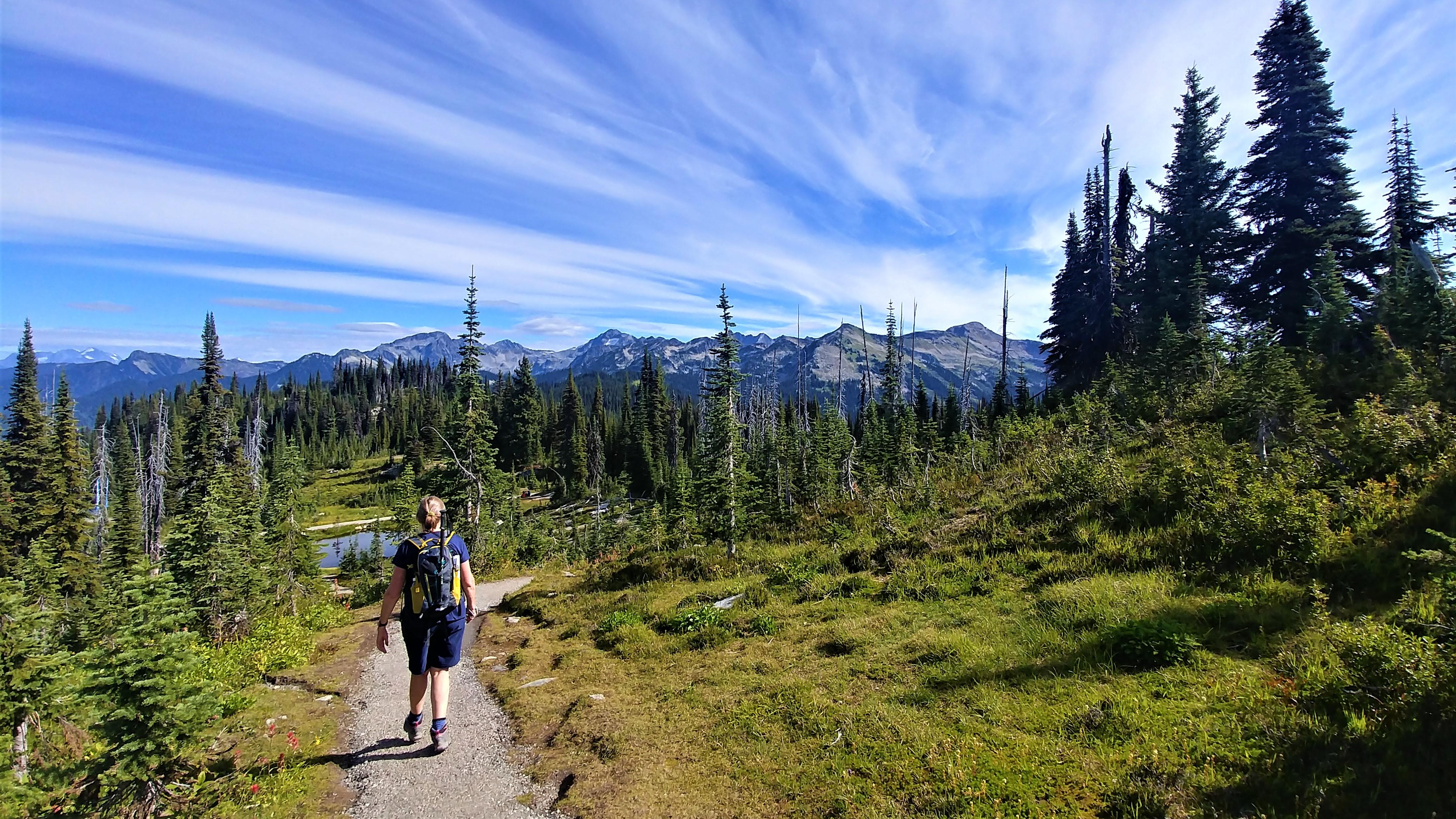 Revelstoke parc national promenade pres dans le ciel