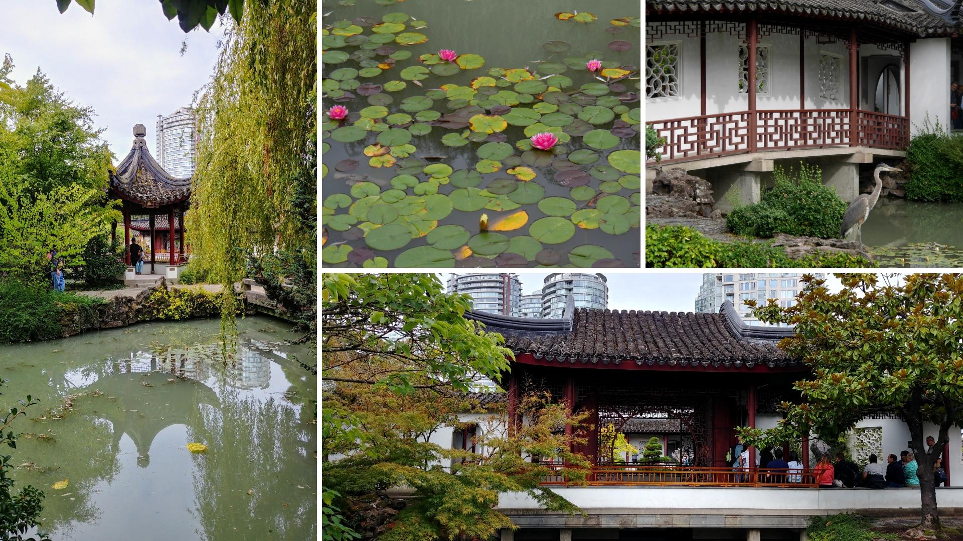 Vancouver chinatown que faire balade blog voyage colombie-britannique arpenter le chemin