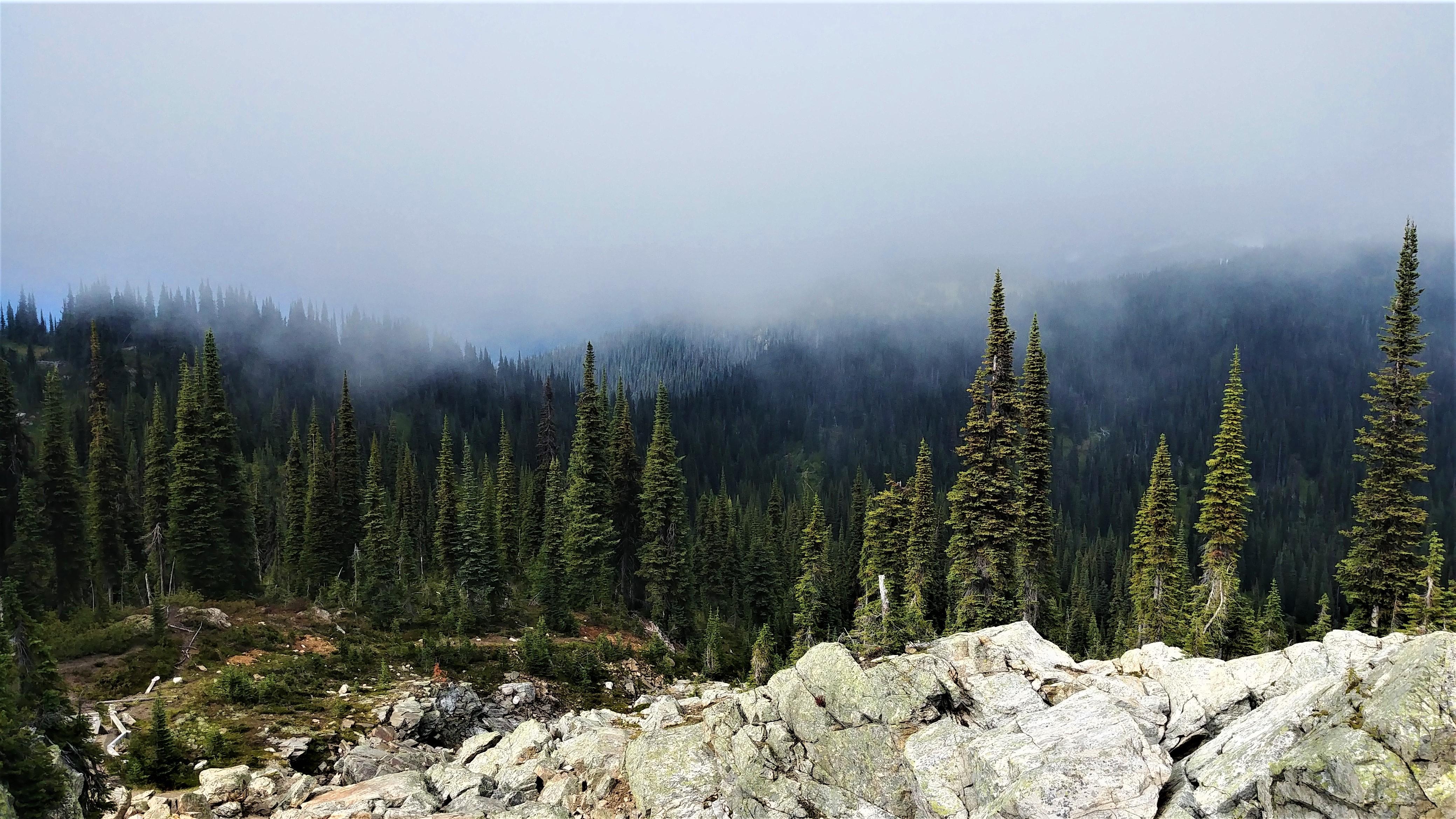 revelstoke promenade pres dans le ciel que voir infos pratiques blog voyage canada ouest arpenter le chemin