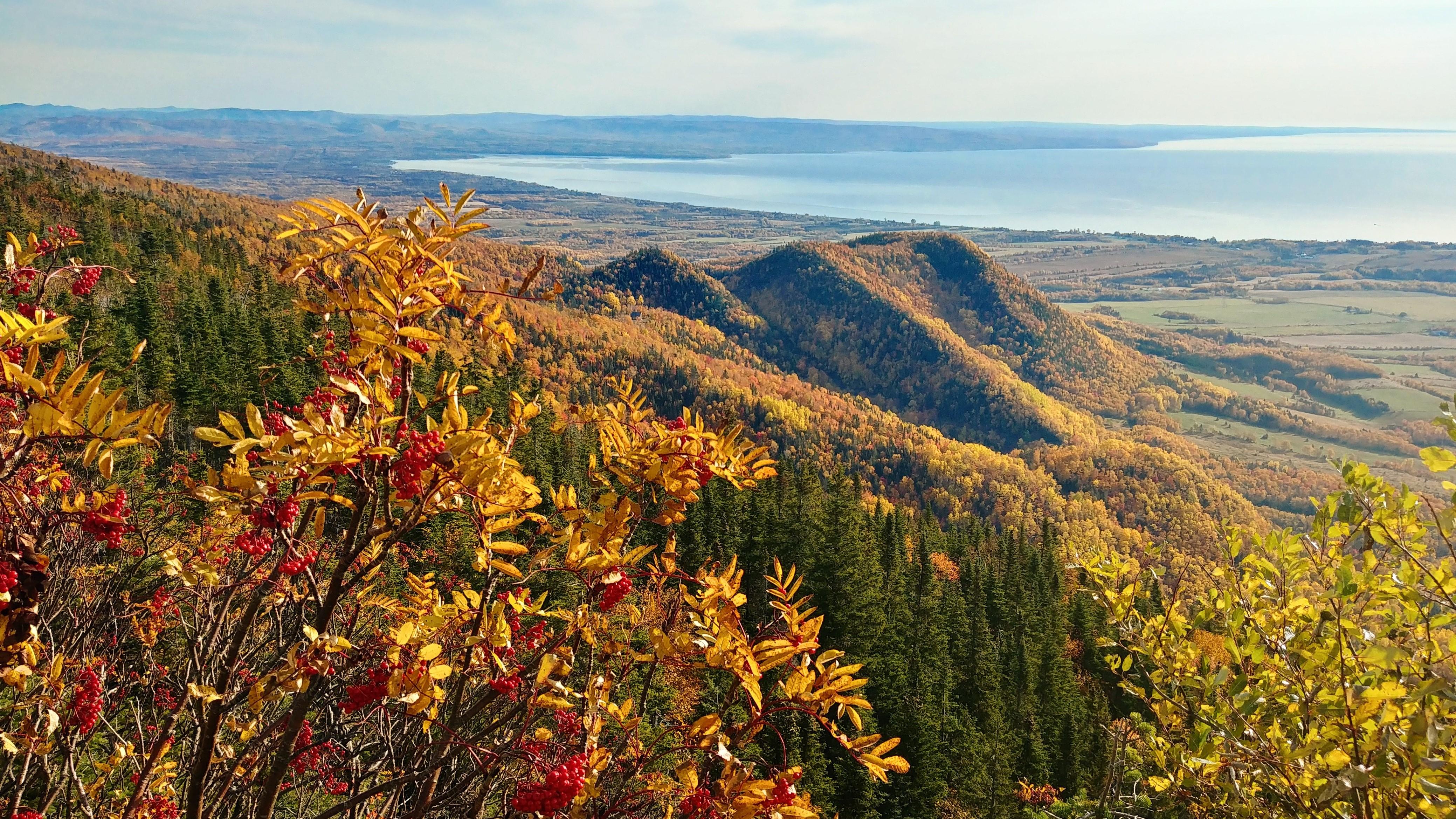 Mont Saint Joseph Carleton sur Mer Baie des Chaleurs Quebec blog voyage road-trip canada automne arpenter le chemin