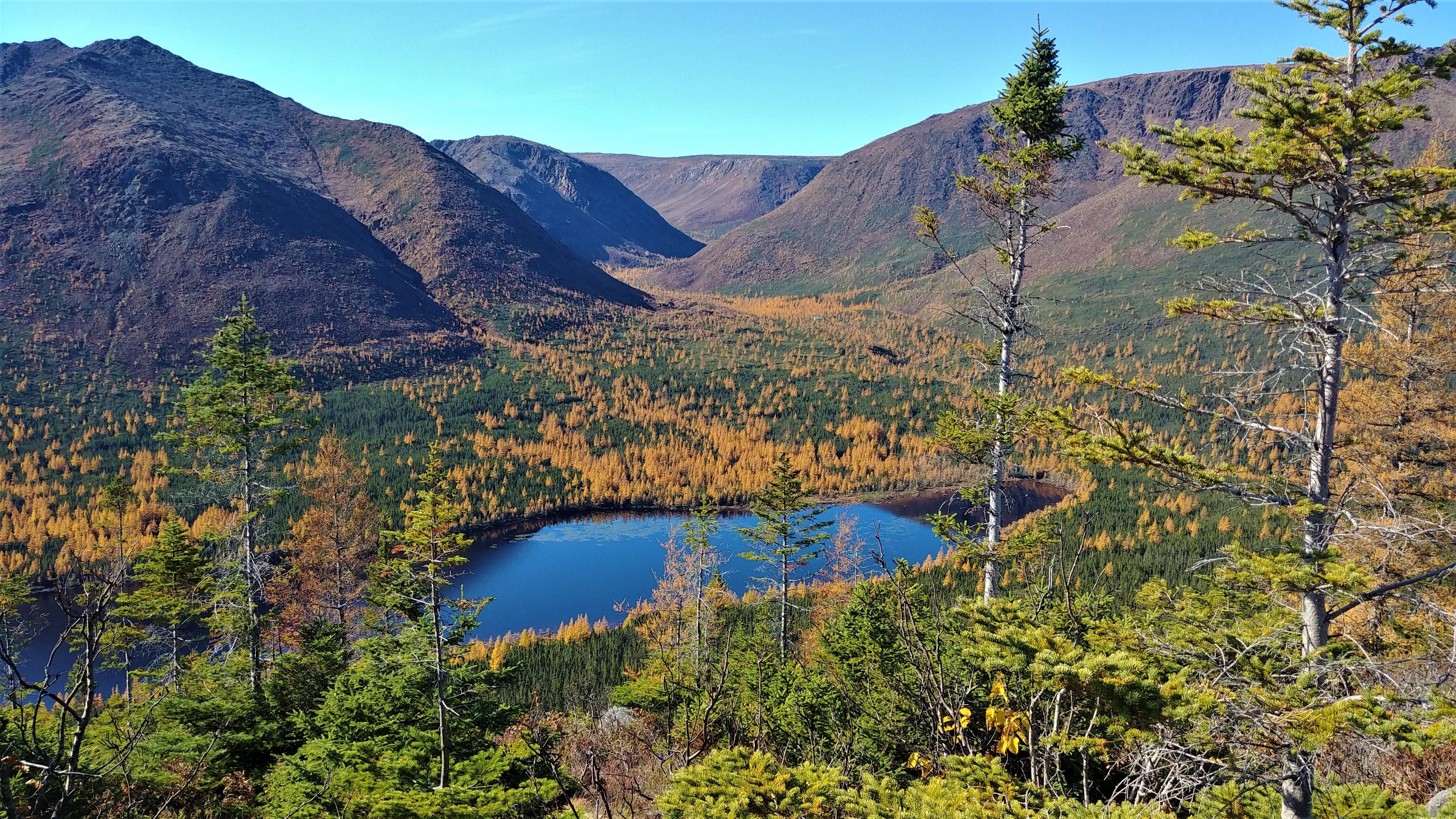 mont olivine parc gaspesie randonnee quebec automne blog voyage canada road-trip arpenter le chemin