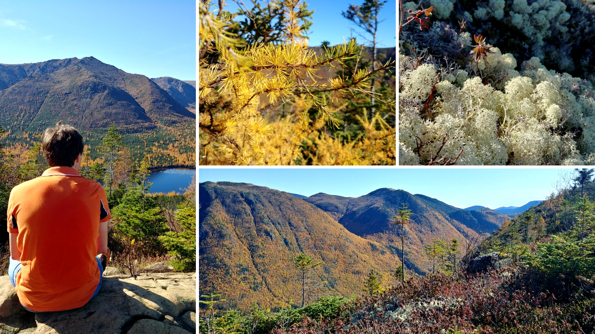 mont olivine parc national gaspesie automne blog voyage canada road-trip arpenter le chemin