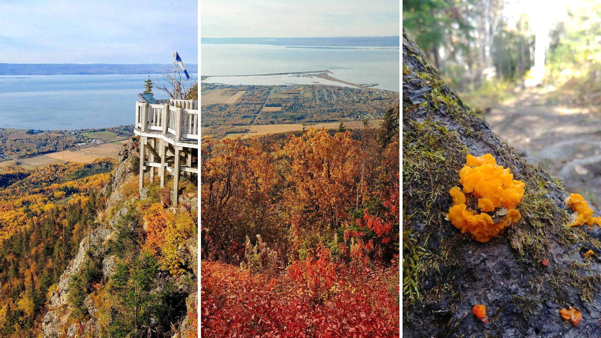 mont saint-joseph gaspesie automne blog voyage canada road-trip arpenter le chemin