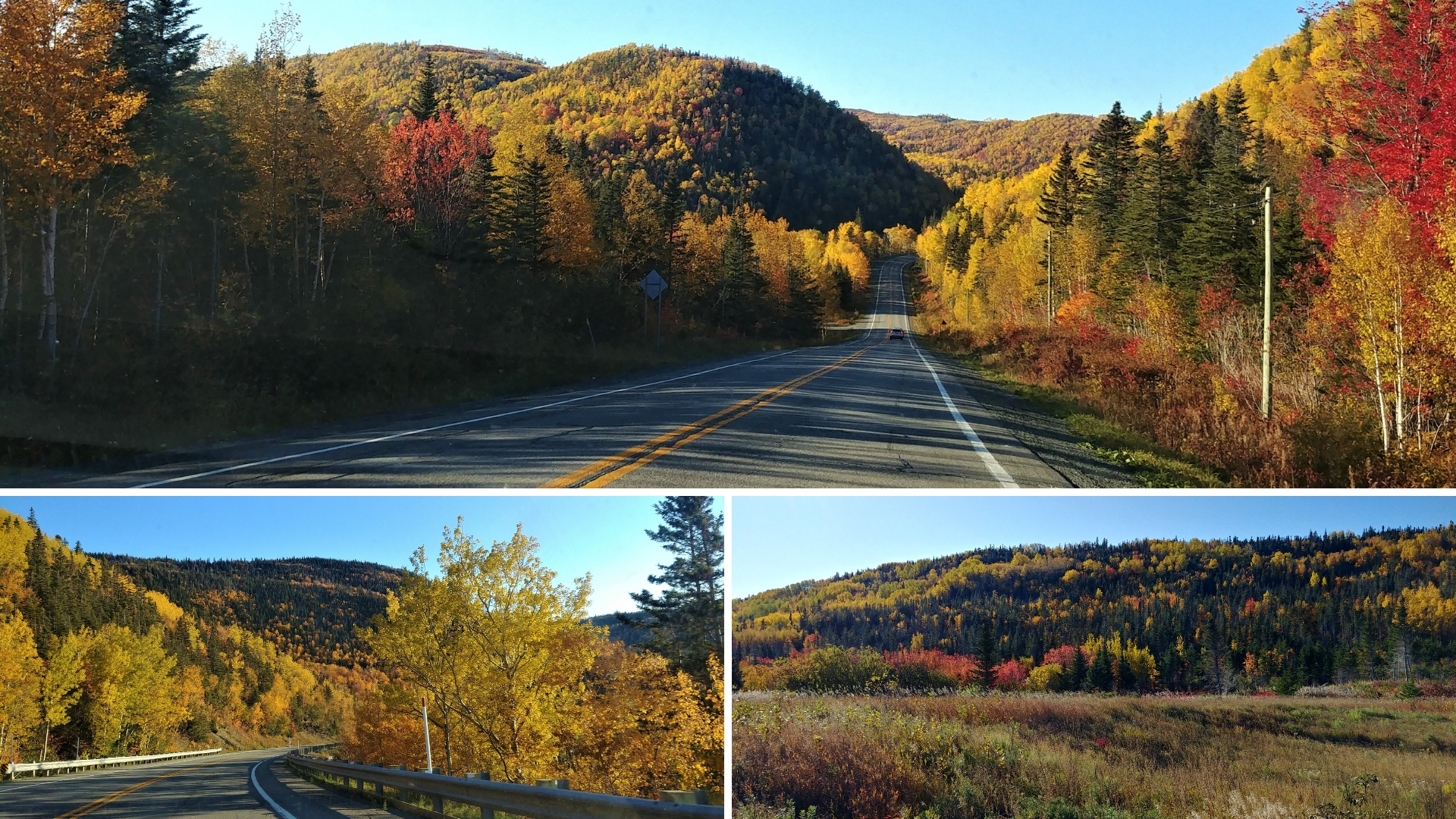 route 132 gaspesie automne blog voyage canada road-trip arpenter le chemin