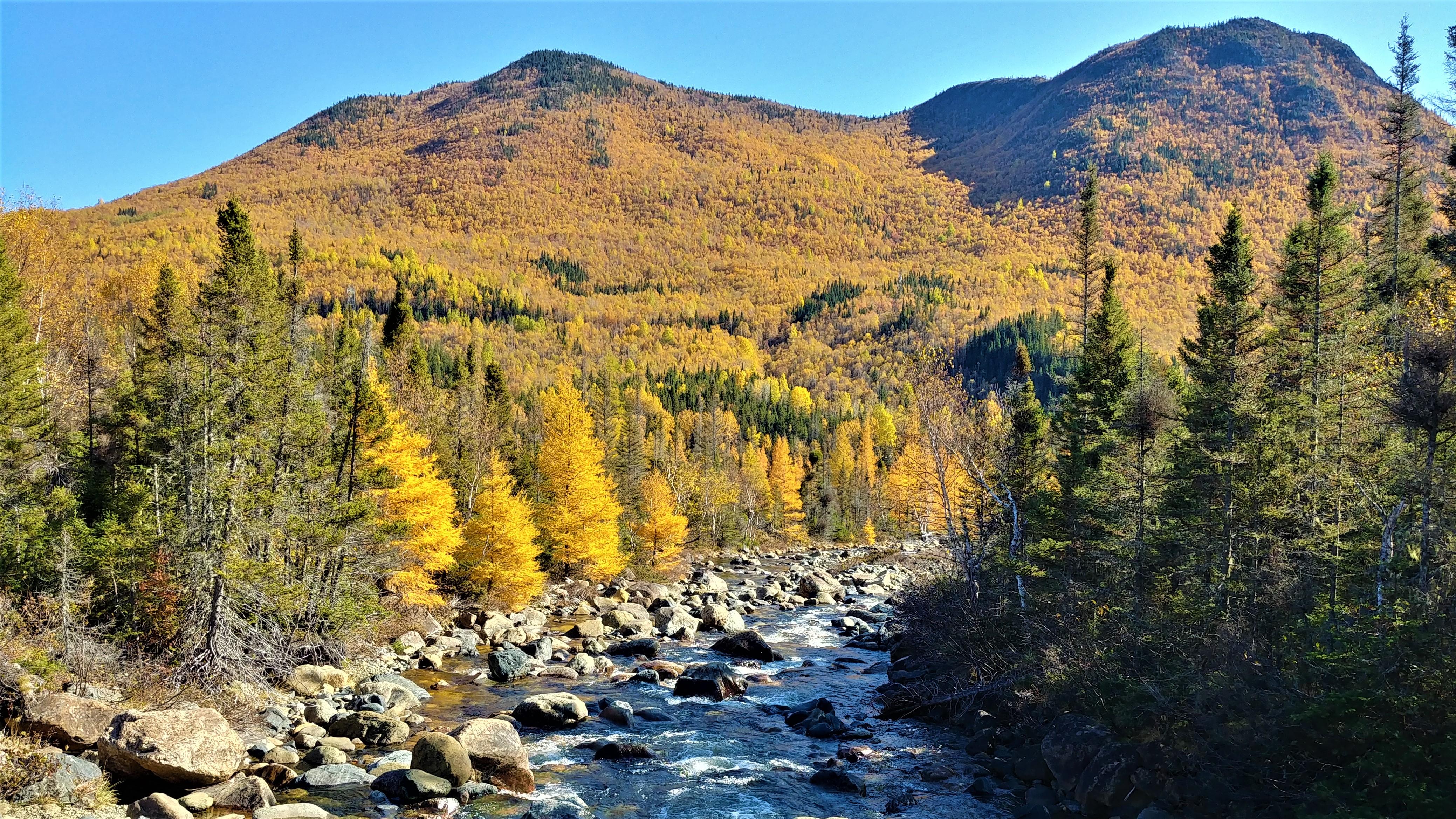 ruisseau du diable parc gaspsie randonnees automne blog voyage quebec arpenter le chemin