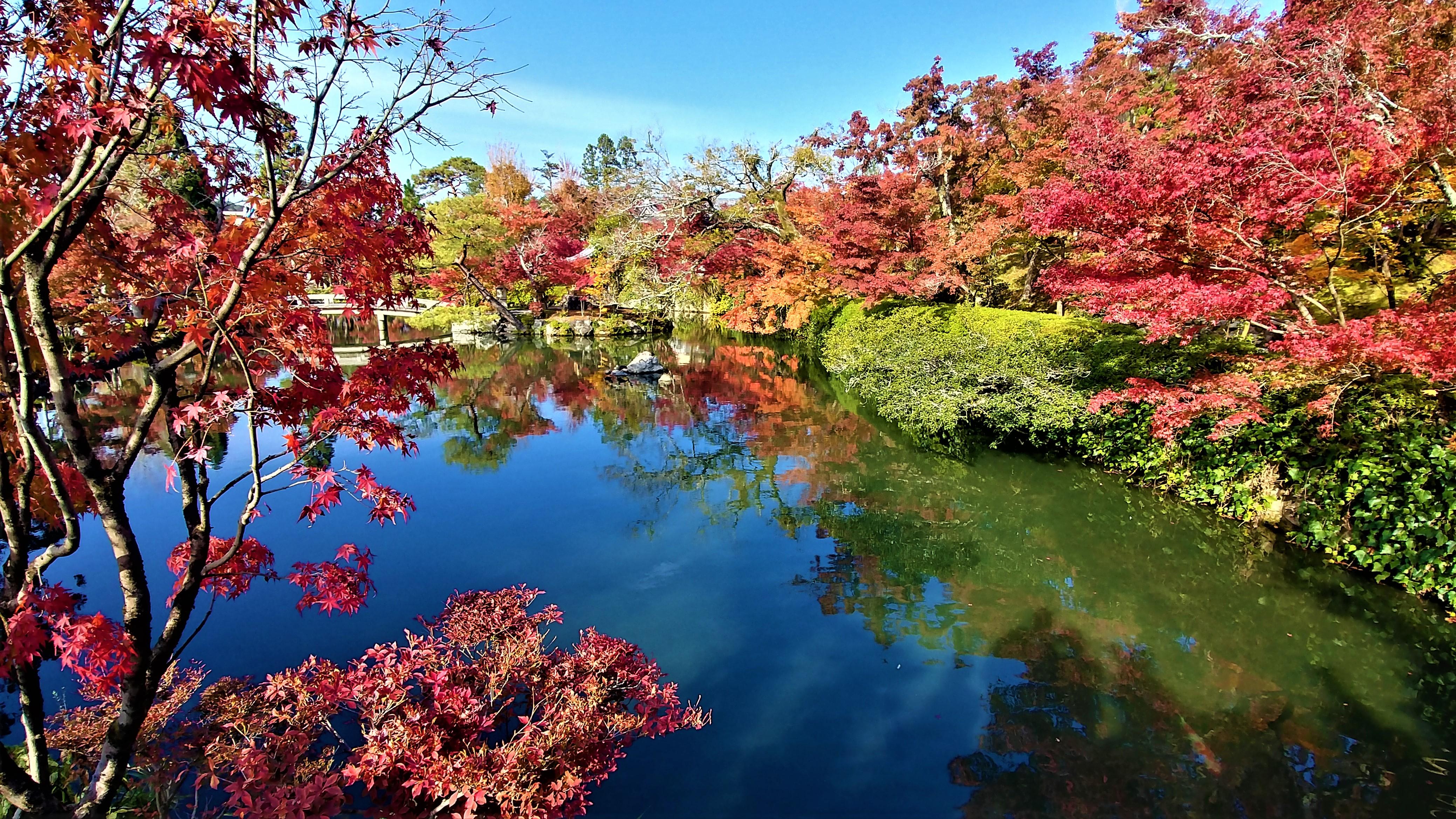 Kyoto Eikando temple automne novembre blog voyage arpenter le chemin