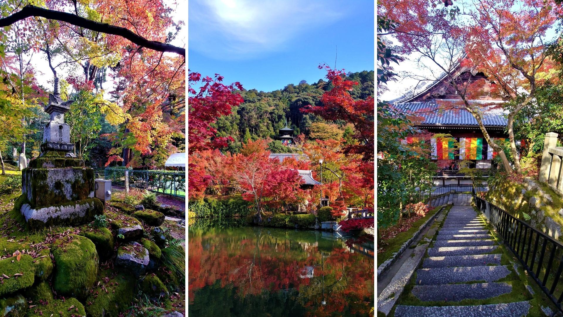 kyoto automne eikando