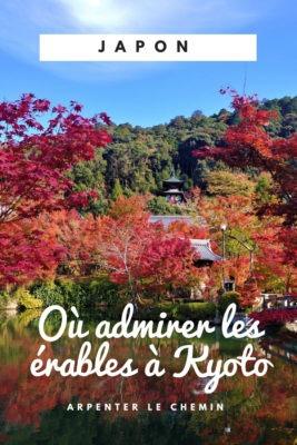 ou admirer erables automne kyoto japon