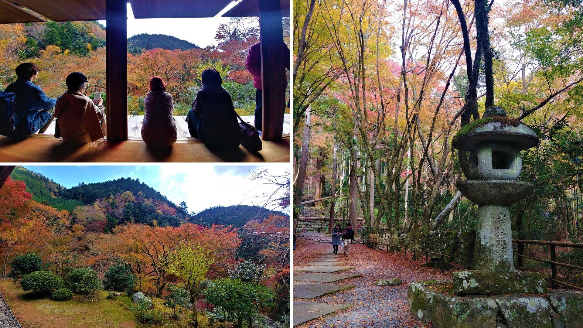 kyoto visiter kozan-ji randonnee blog voyage japon arpenter le chemin
