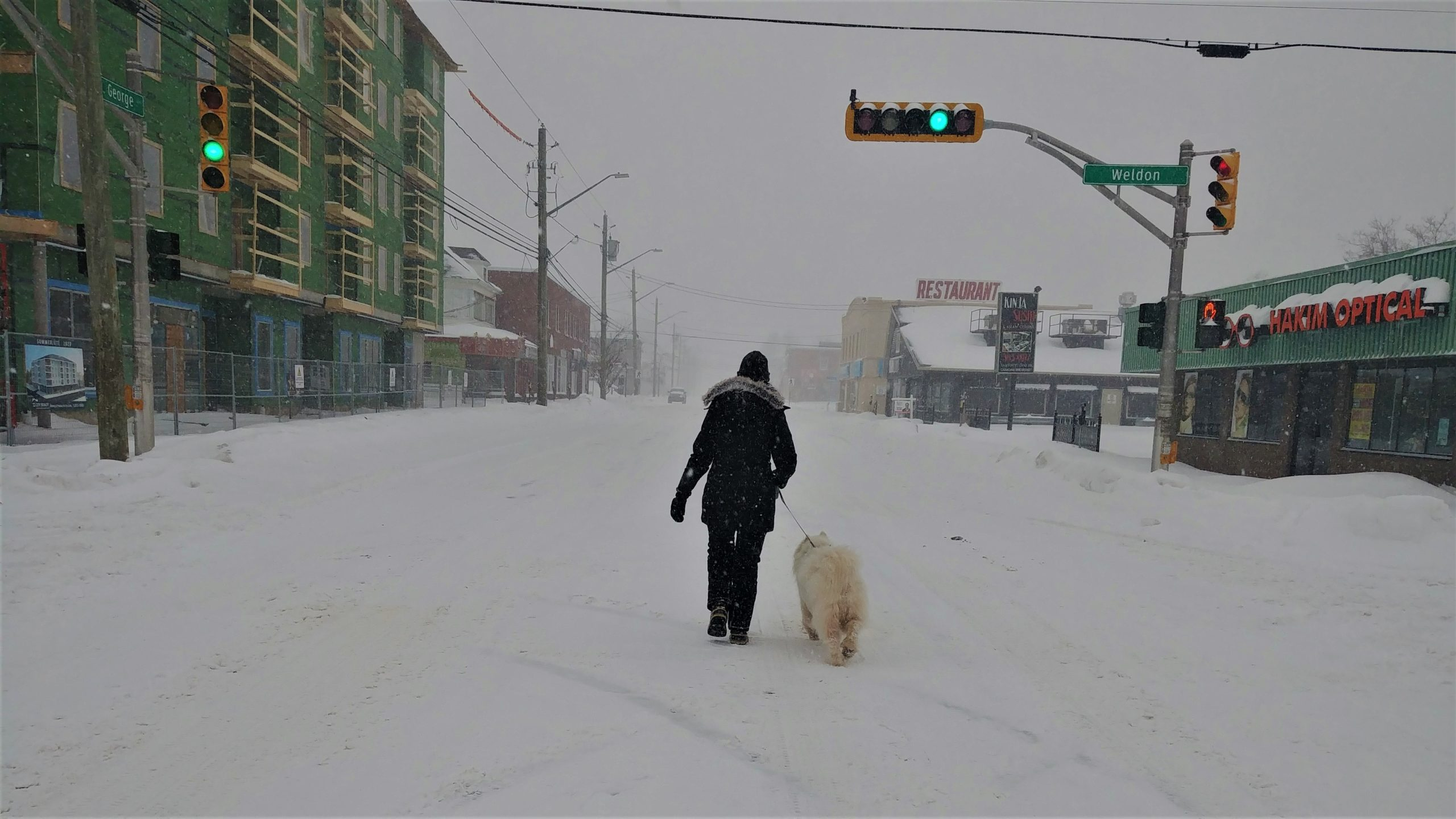 Tempête hiver canada que faire Arpenter le chemin